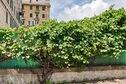 Meer info: Vakantiehuizen  Tolemaide Genova