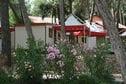 Meer info: Vakantiehuizen  Village Poljana 2 Mali