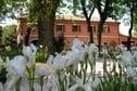 Meer info: Vakantiehuisje Lella, Serrungarina (Le Marche)
