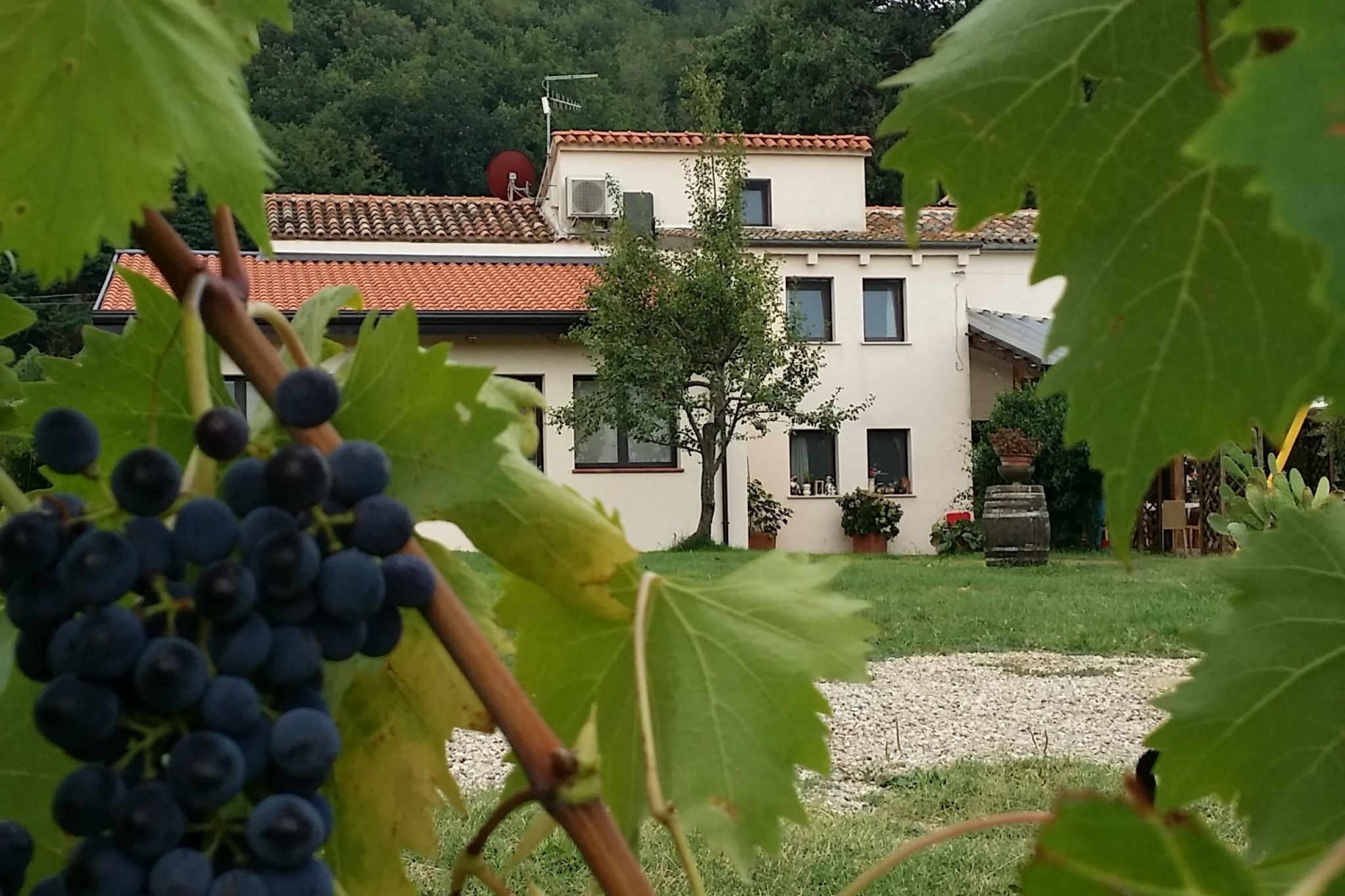 Appartement moderne avec piscine à Gemmano en Italie