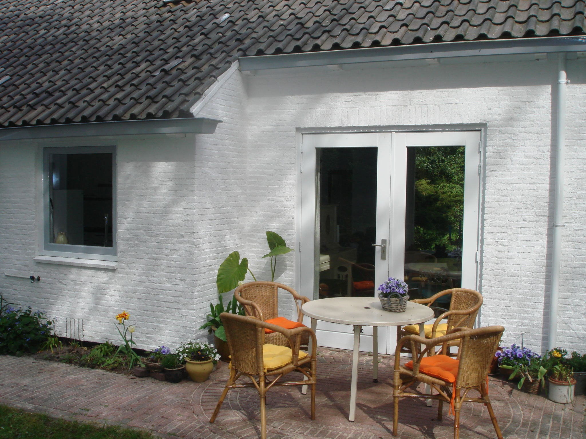 Holland | North Sea Coast North | Holiday home De Mossel | all year | TerraceBalcony
