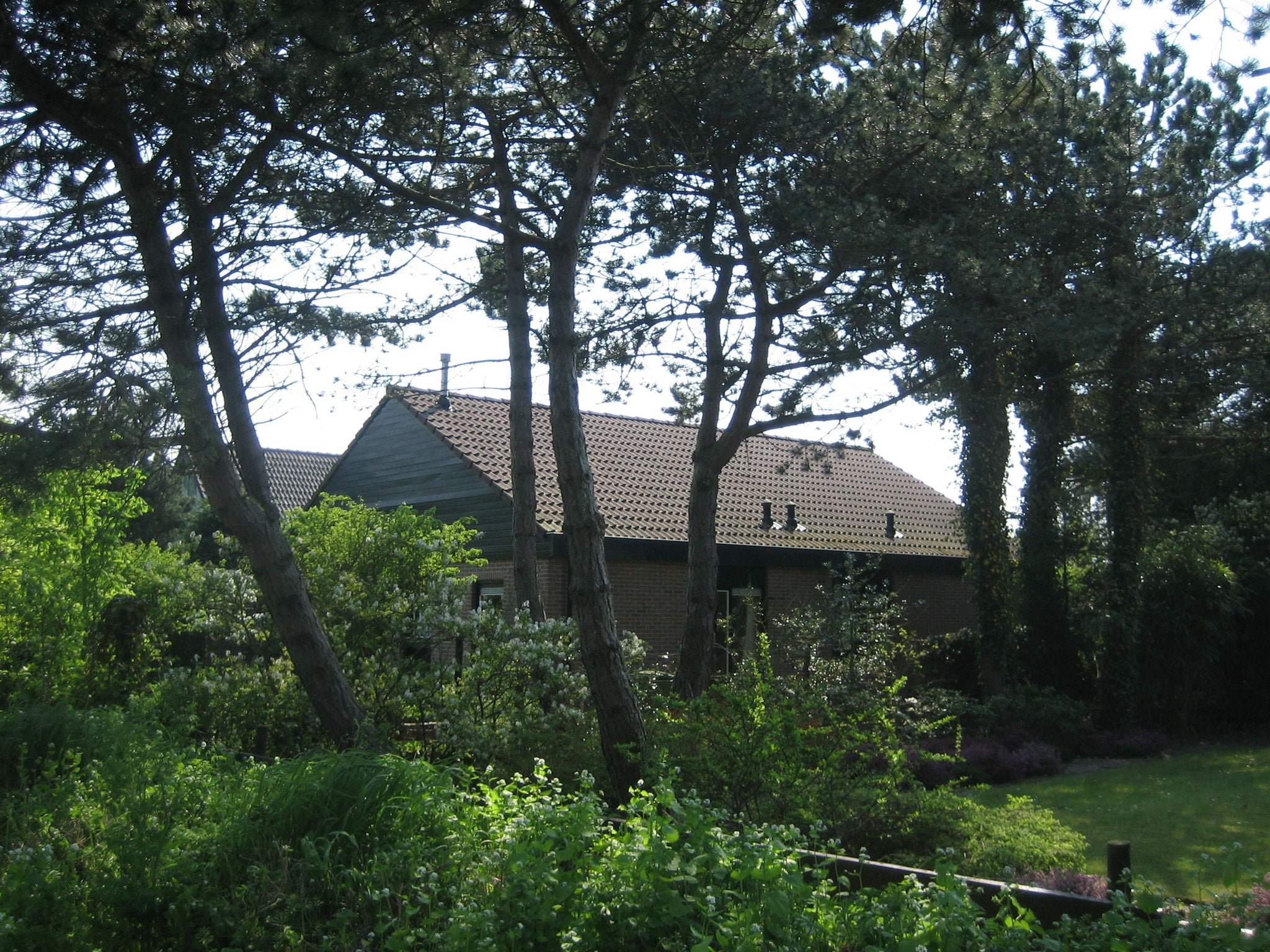 Holland | North Sea Coast North | Holiday home Morgenster | all year | ExteriorSummer