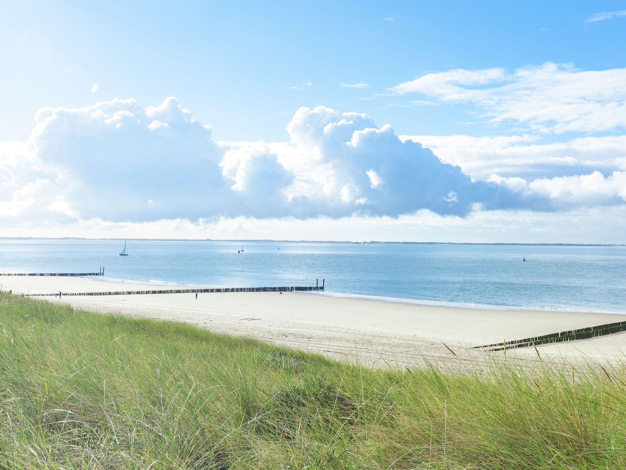 Holland | Zeeland | Holiday home Zeeuws Zeehuis | all year | AreaSummer1KM