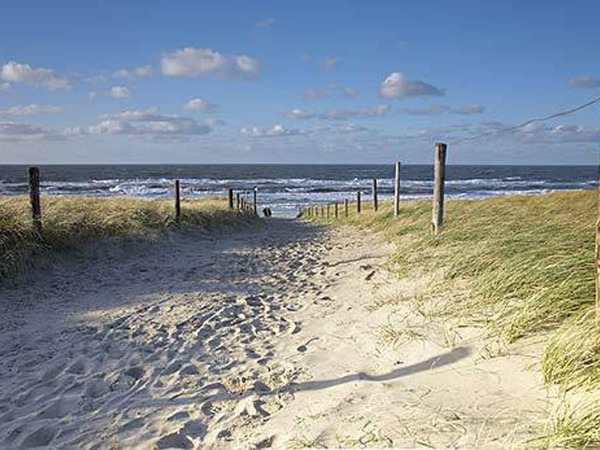 Holland | North Sea Coast North | Holiday home Wijze Uil Schoorl | all year | AreaSummer5KM