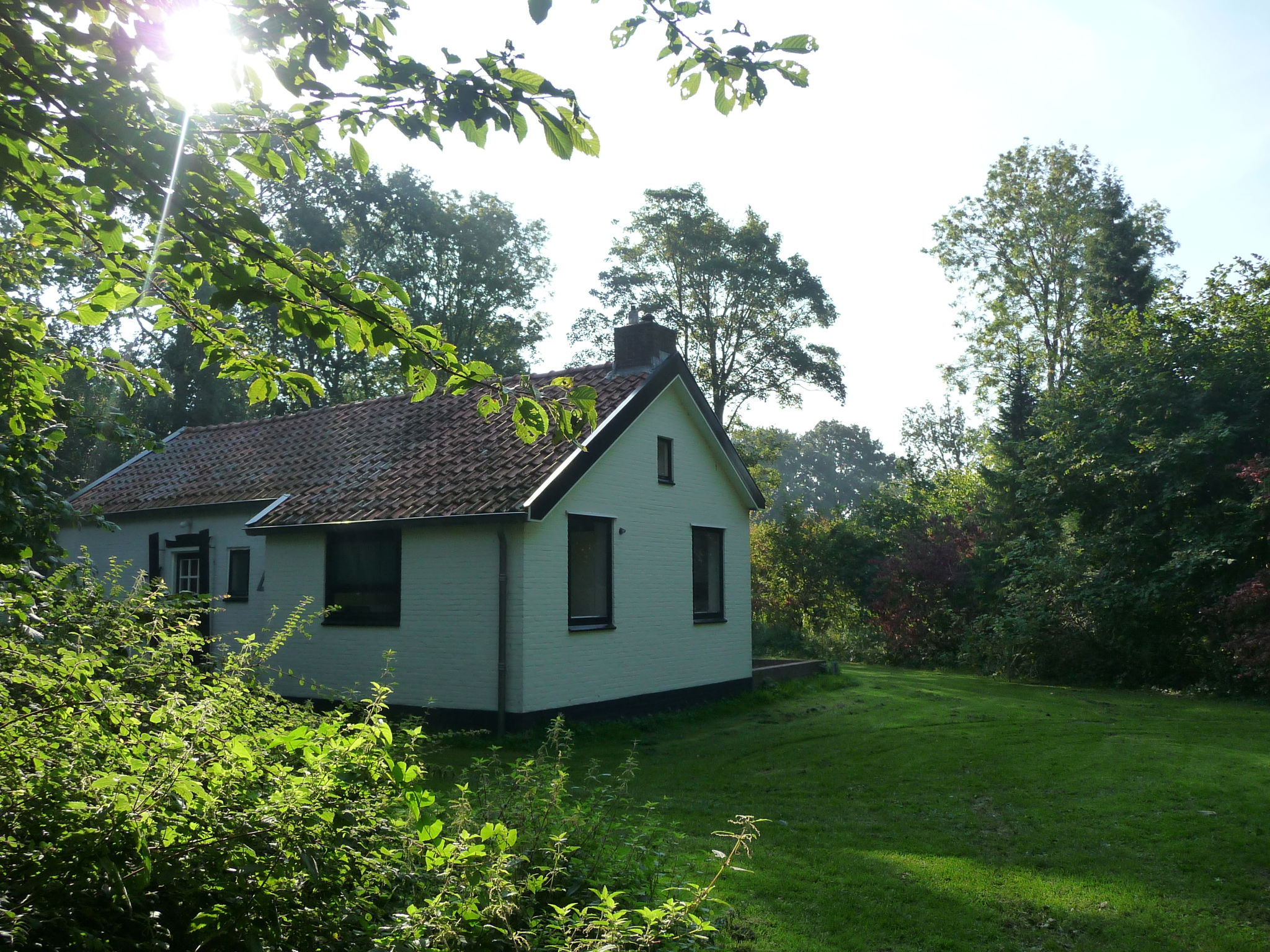 Holland | Zeeland | Holiday home De Alk | all year | ExteriorSummer