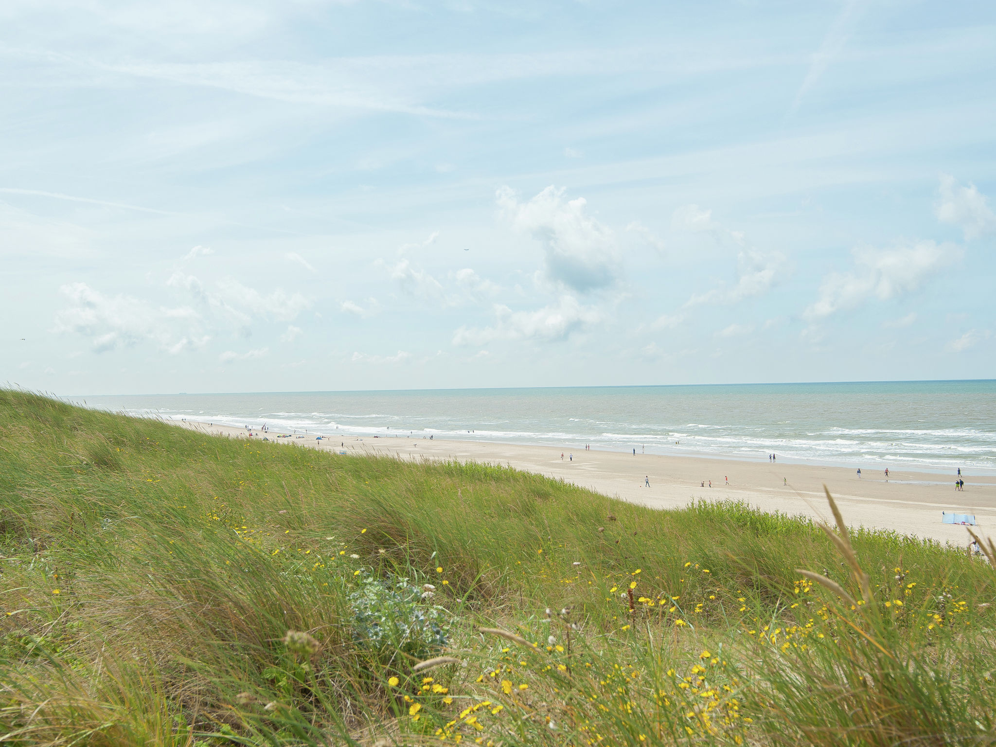 Holland | North Sea Coast North | Holiday home De Wilg | all year | AreaSummer5KM