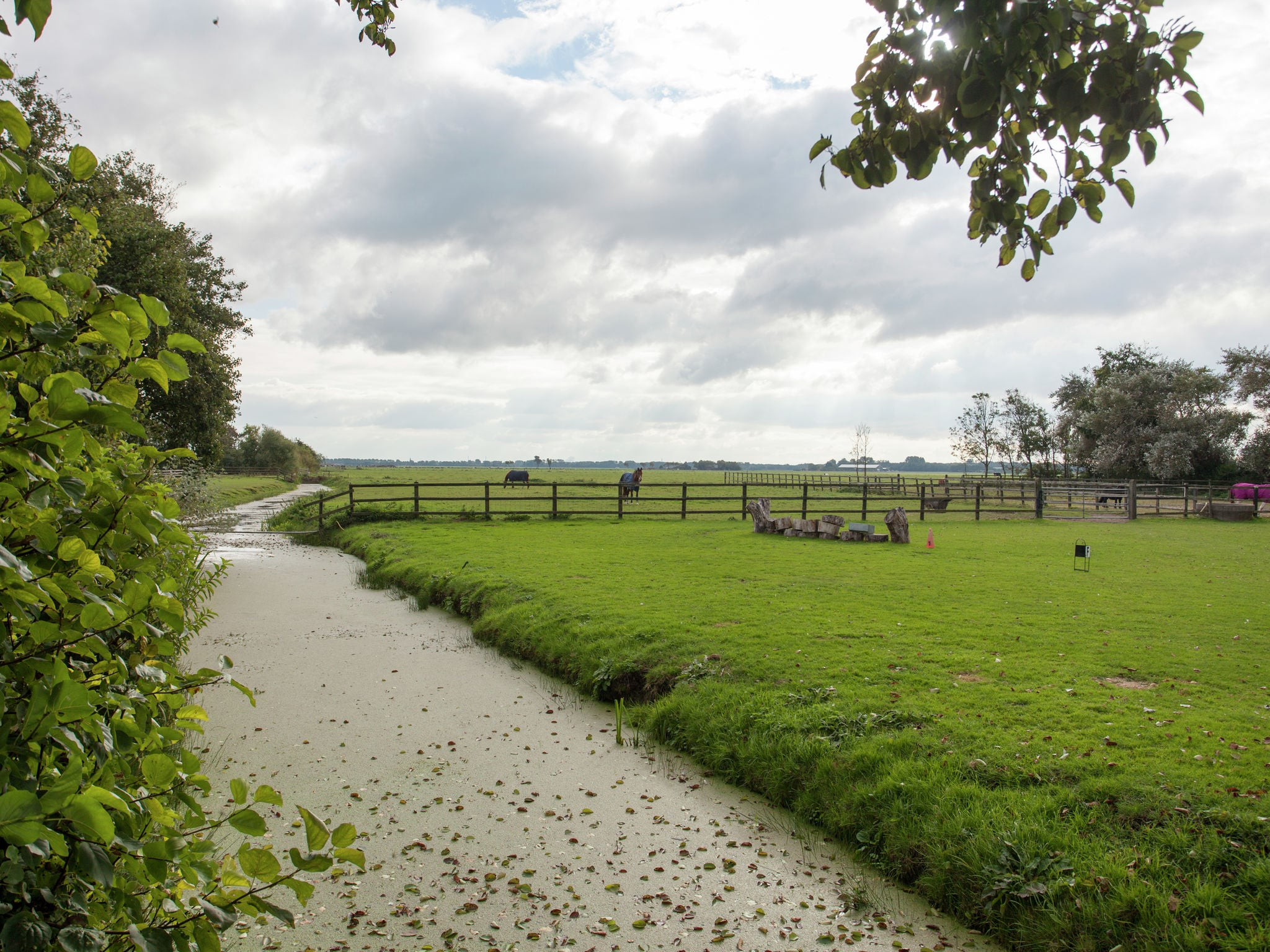 Holland | North Sea Coast North | Holiday home Vrijzicht | all year | ViewSummer