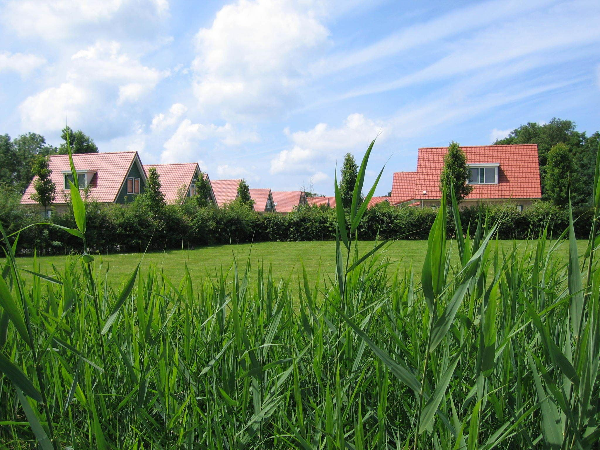 Holland | Zeeland | Holiday home Lepelaar | all year | ViewSummer