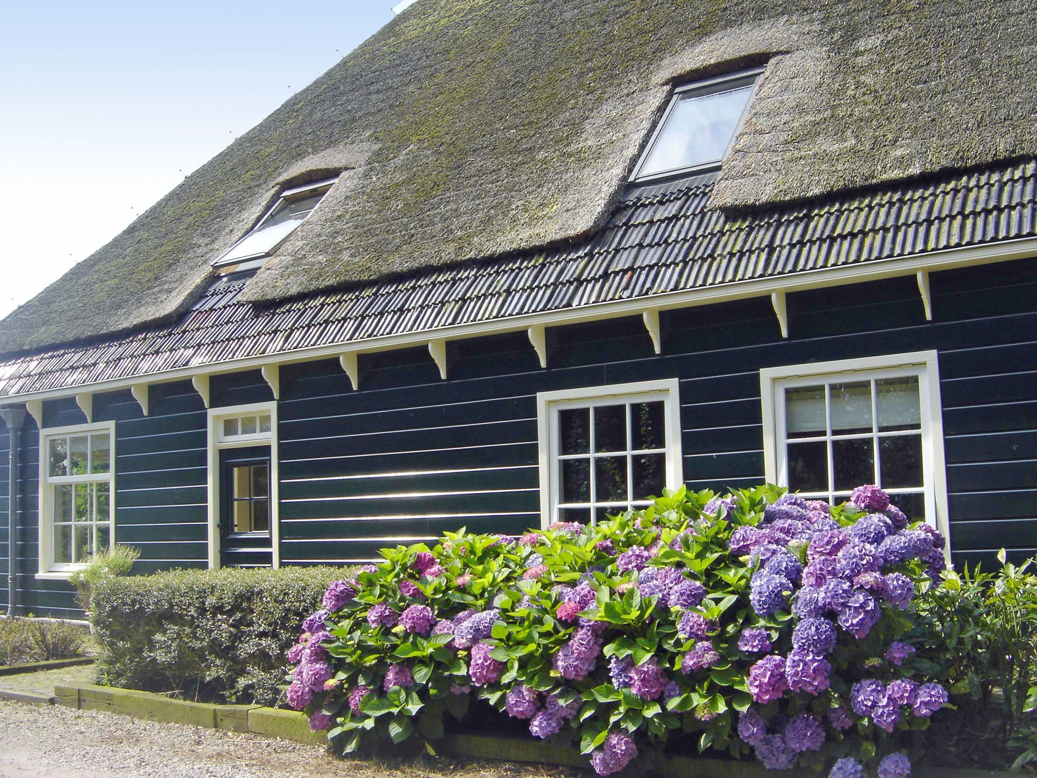 Holland | North Sea Coast North | Holiday home Aan de Grote Sloot | all year | ExteriorSummer