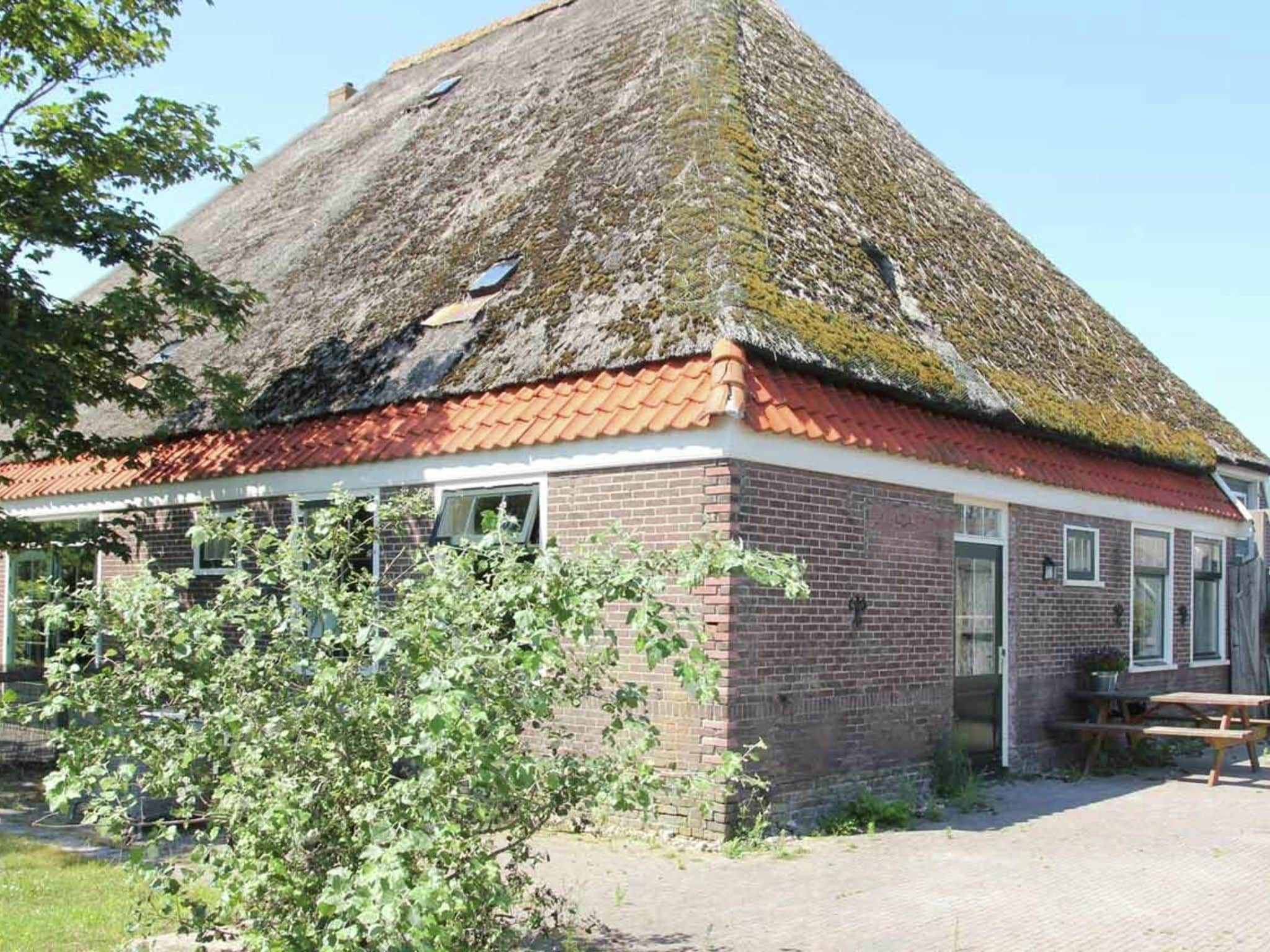 Holland | North Sea Coast North | Holiday home De Vossehoeck I | all year | ExteriorSummer
