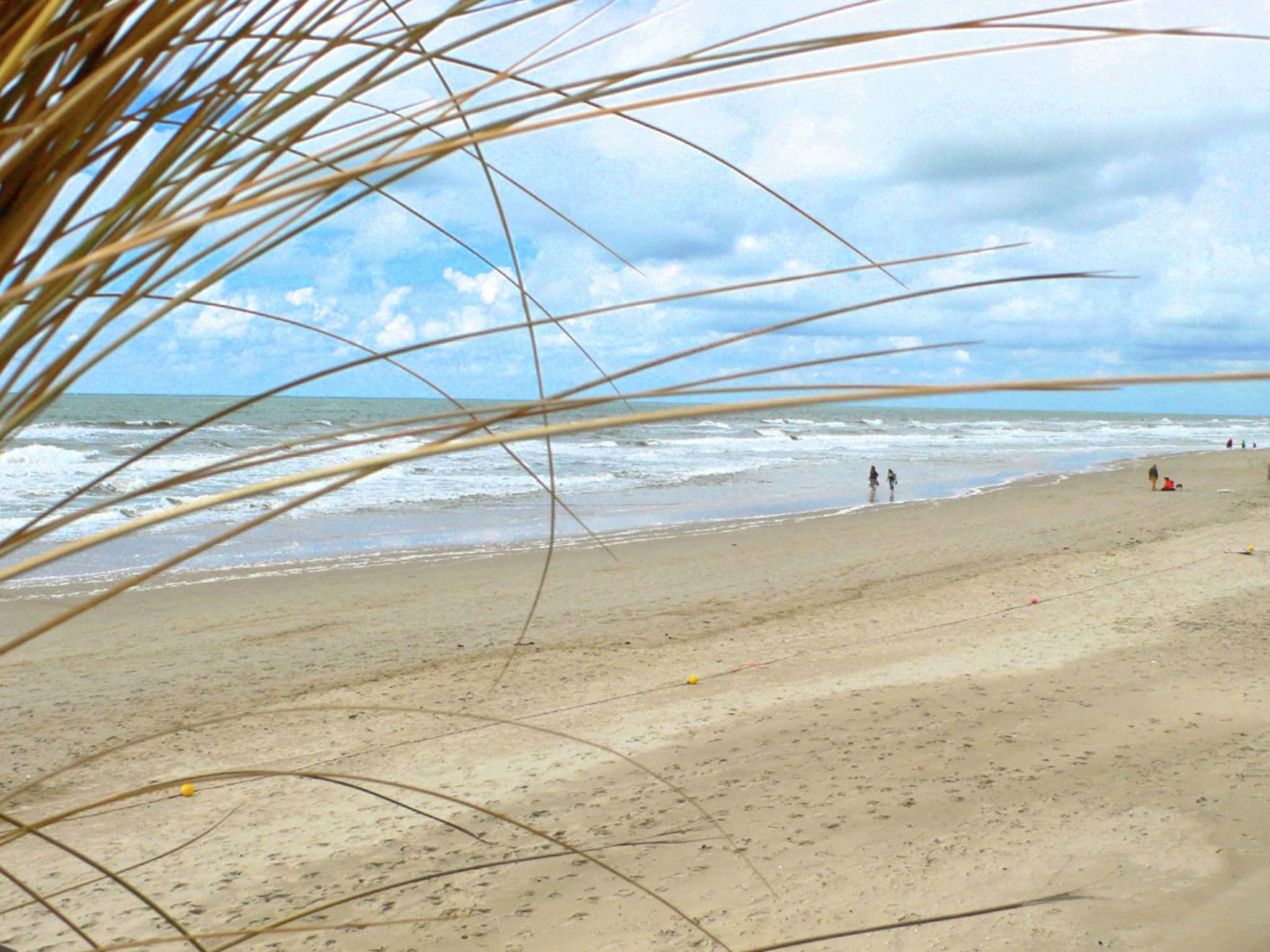 Holland | North Sea Coast North | Holiday home De Vossehoeck I | all year | AreaSummer5KM
