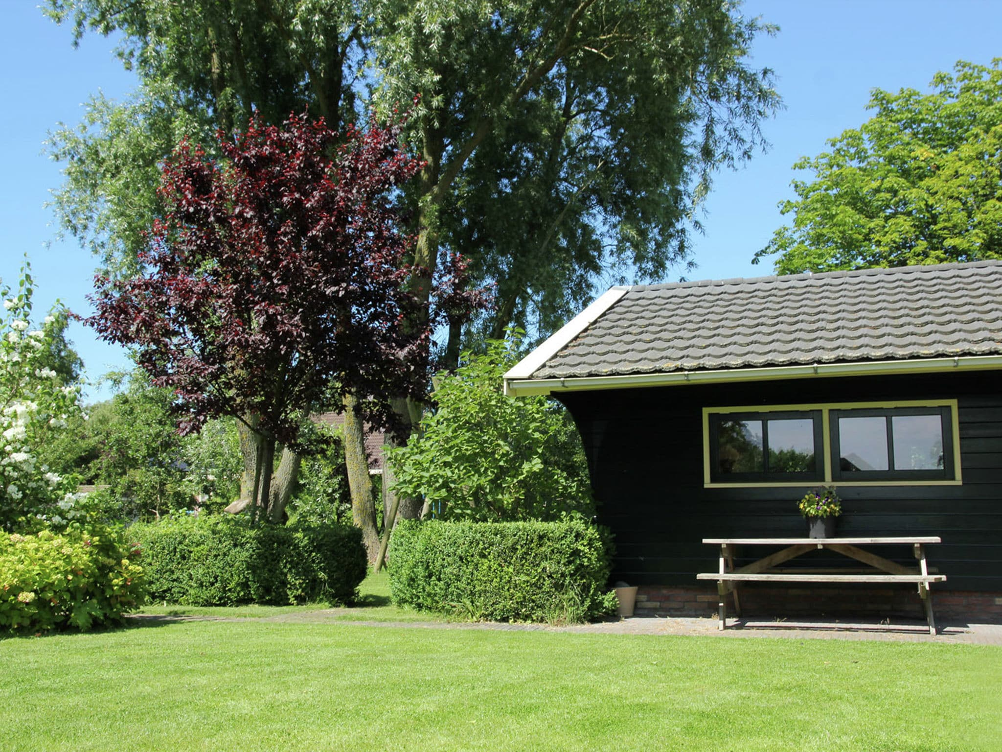 Holland | North Sea Coast North | Holiday home The Island | all year | GardenSummer