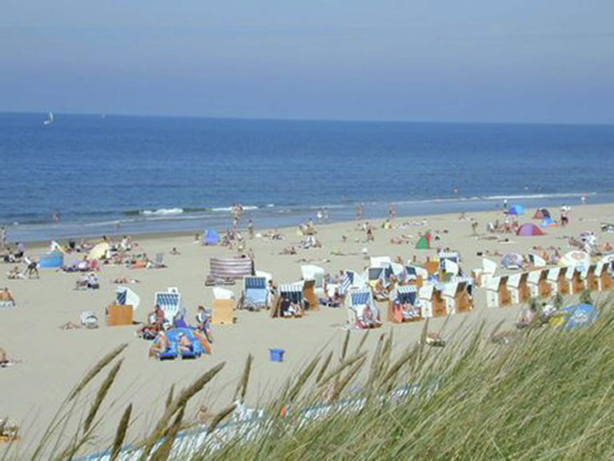 Holland | North Sea Coast North | Holiday home Bebke's Cottage | all year | AreaSummer5KM