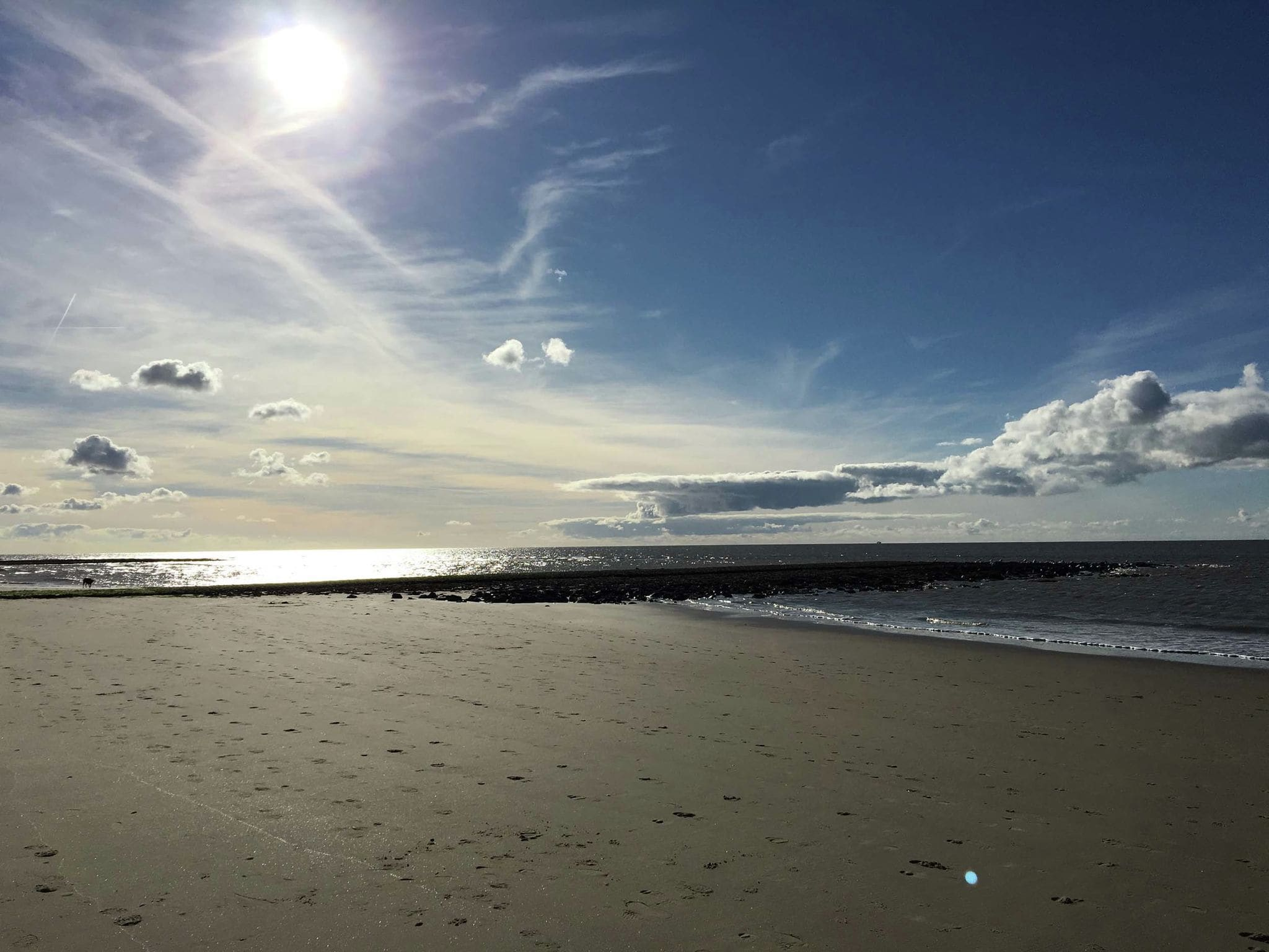 Holland | North Sea Coast North | Holiday home Thermae | Holidays | AreaSummer20KM