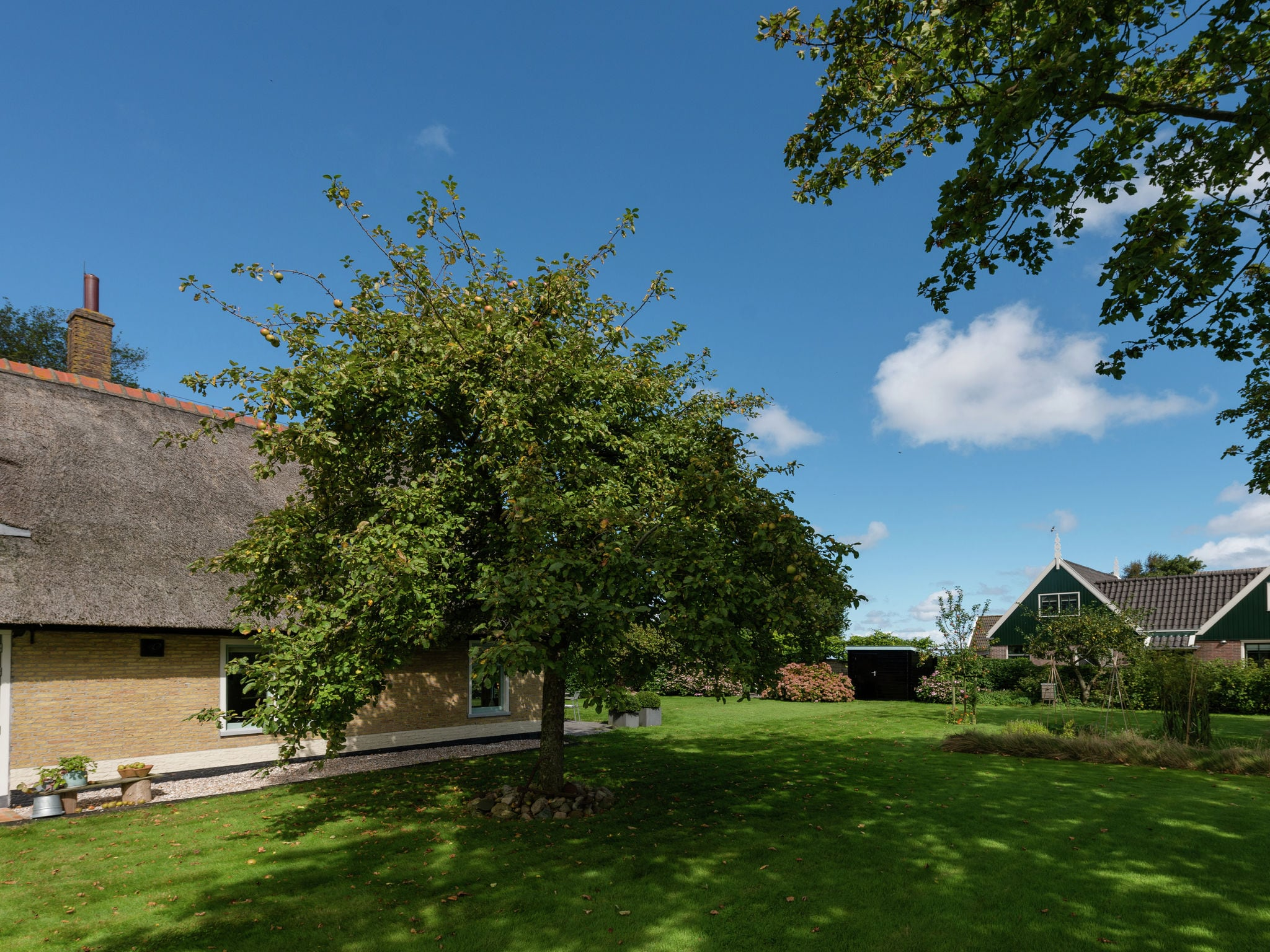 Holland | North Sea Coast North | Holiday home 't Achterhuis op Vatrop | all year | ExteriorSummer