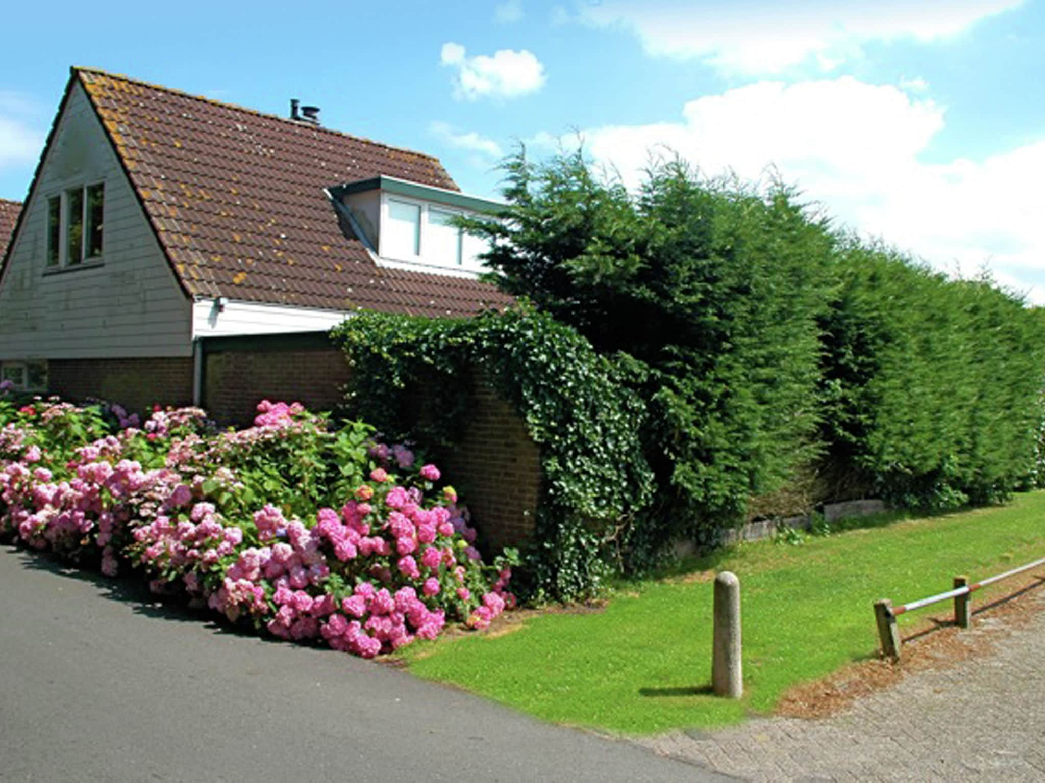 Holland | North Sea Coast South | Holiday home Madelon | all year | ExteriorSummer