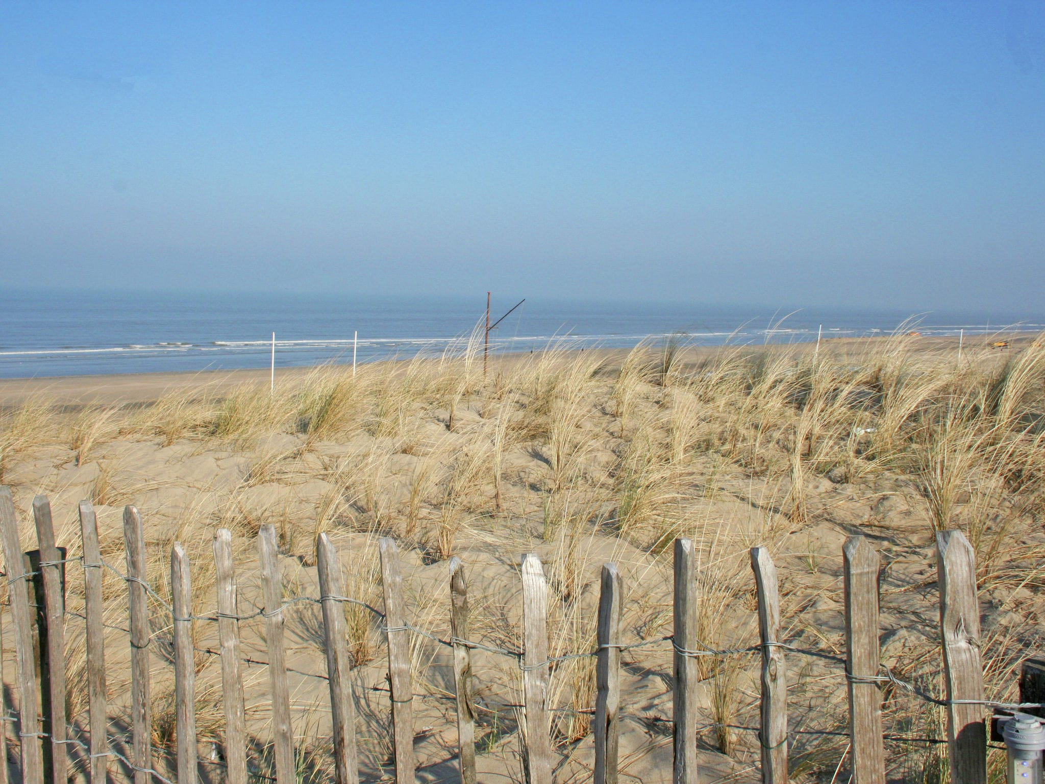 Holland | North Sea Coast North | Holiday home 't Zomerhuis | all year | AreaSummer20KM