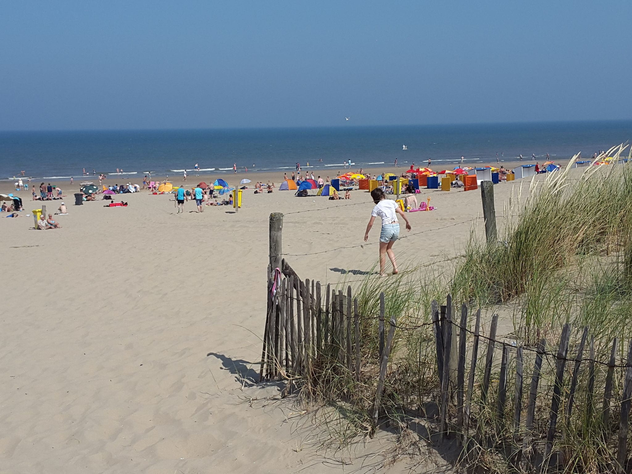 Holland | North Sea Coast South | Holiday home Zicht op Zee | all year | ViewSummer