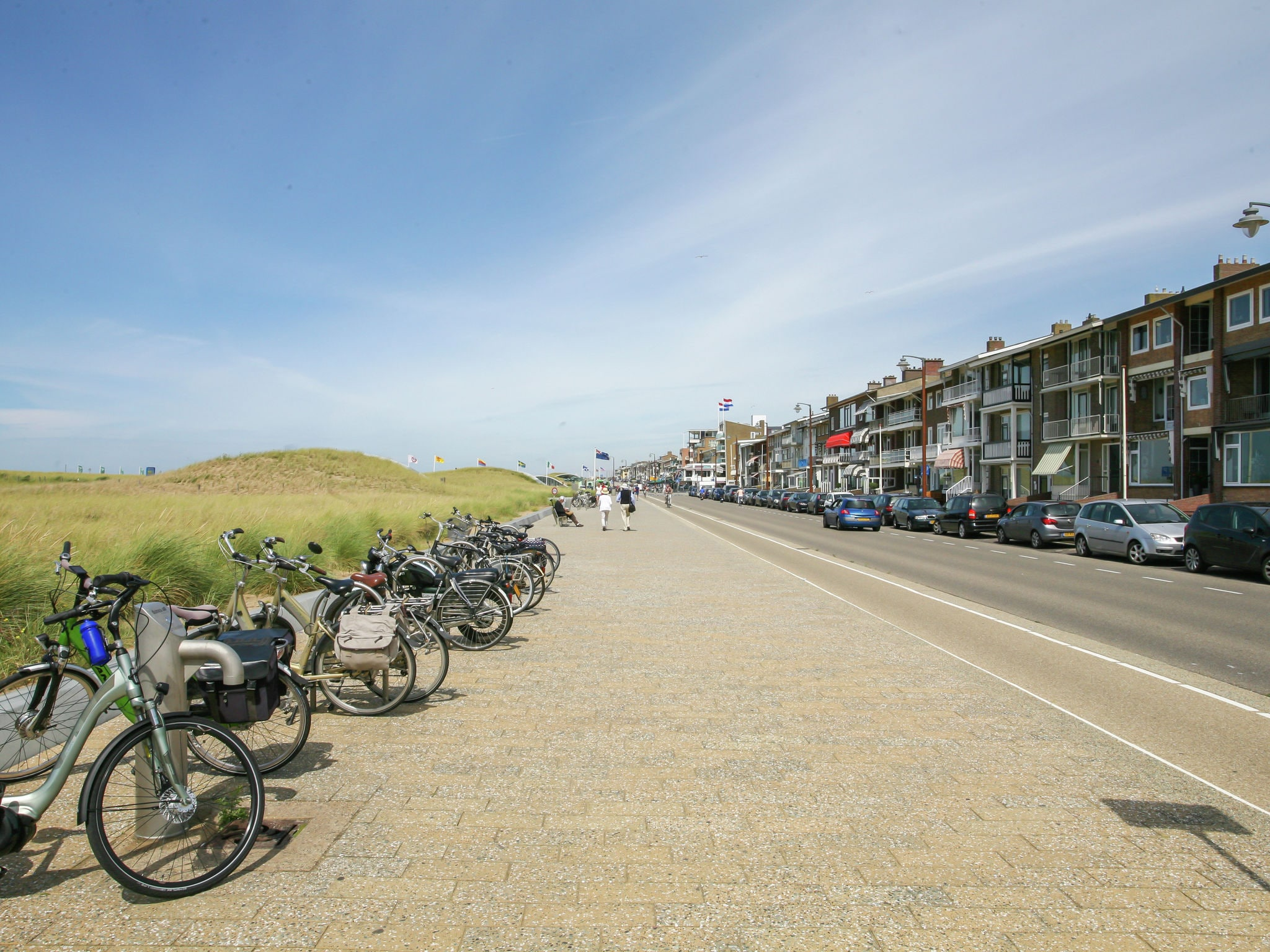 Holland | North Sea Coast South | Holiday home Taateville | all year | AreaSummer1KM
