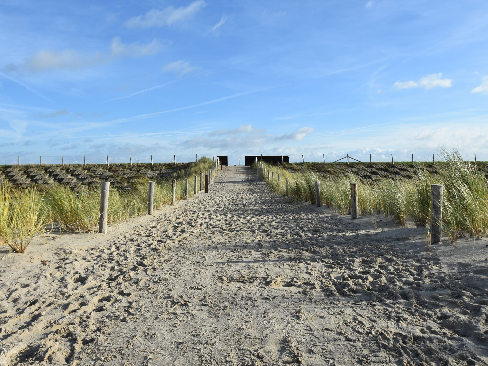 Holland | North Sea Coast North | Holiday home Red Cedar | all year | AreaSummer1KM