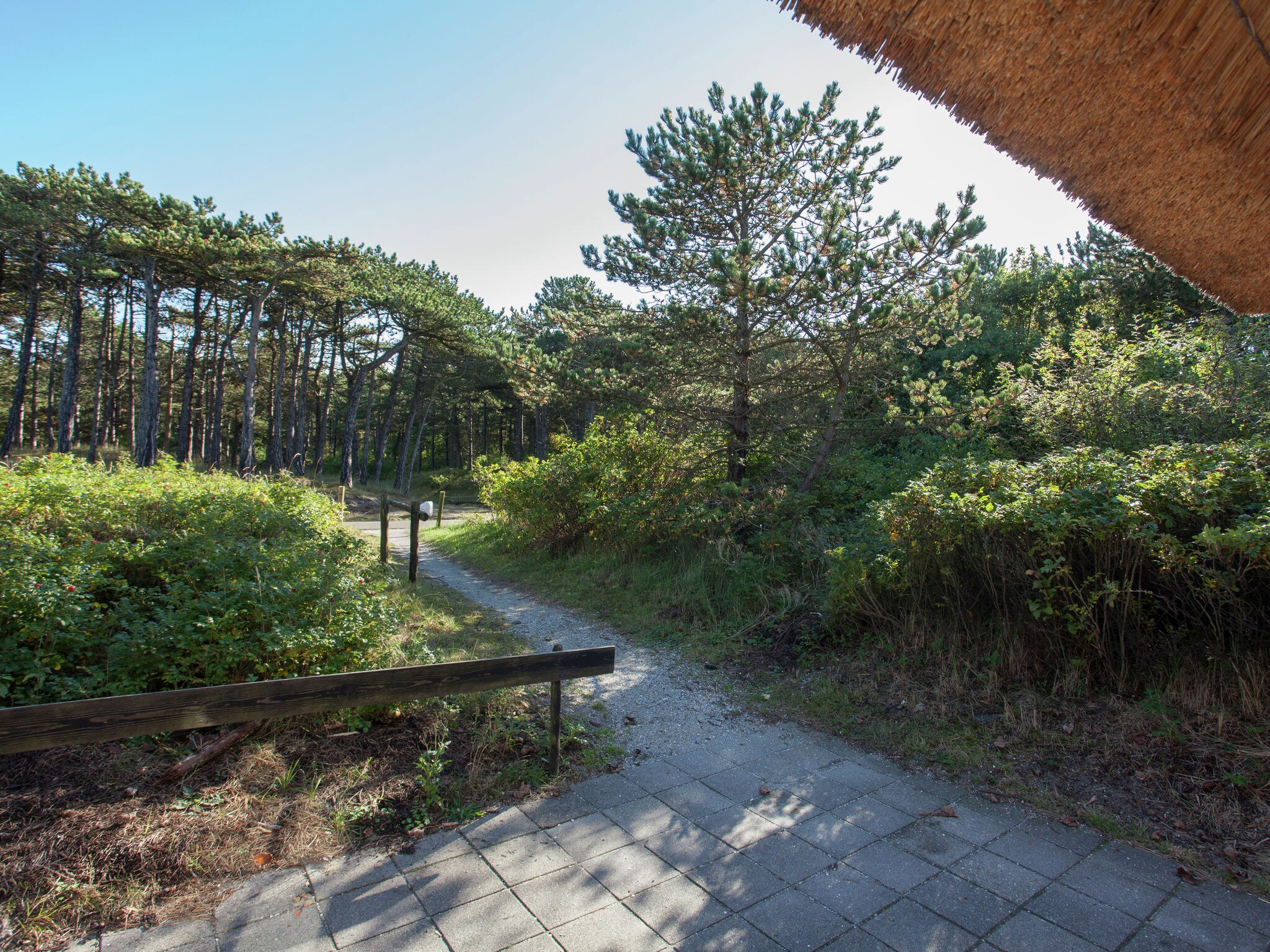 Holland | Wad Islands | Holiday home In 't Duin I | all year | AreaSummer1KM