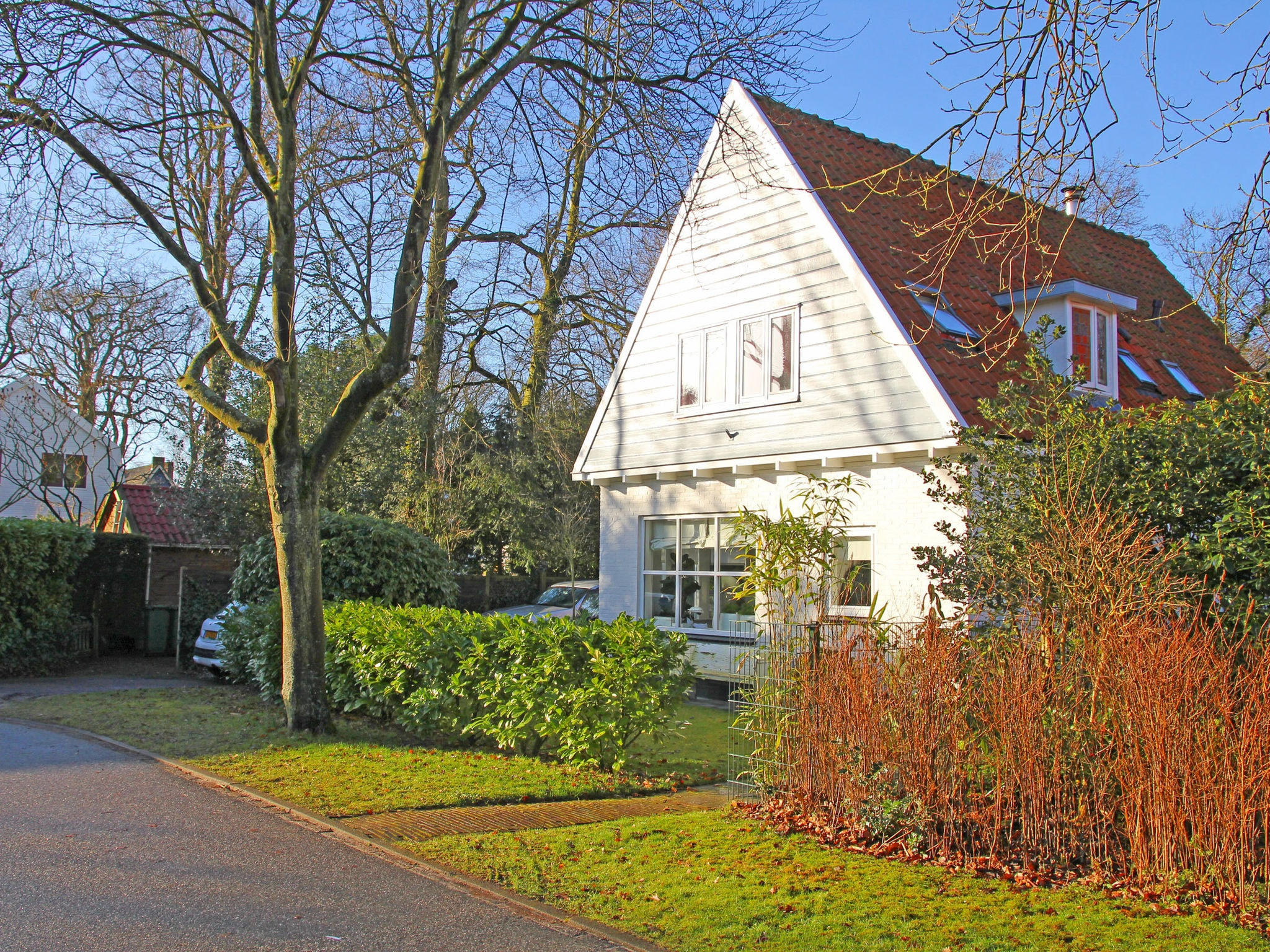 Holland | North Sea Coast North | Holiday home Villa Bo | all year | ExteriorSummer