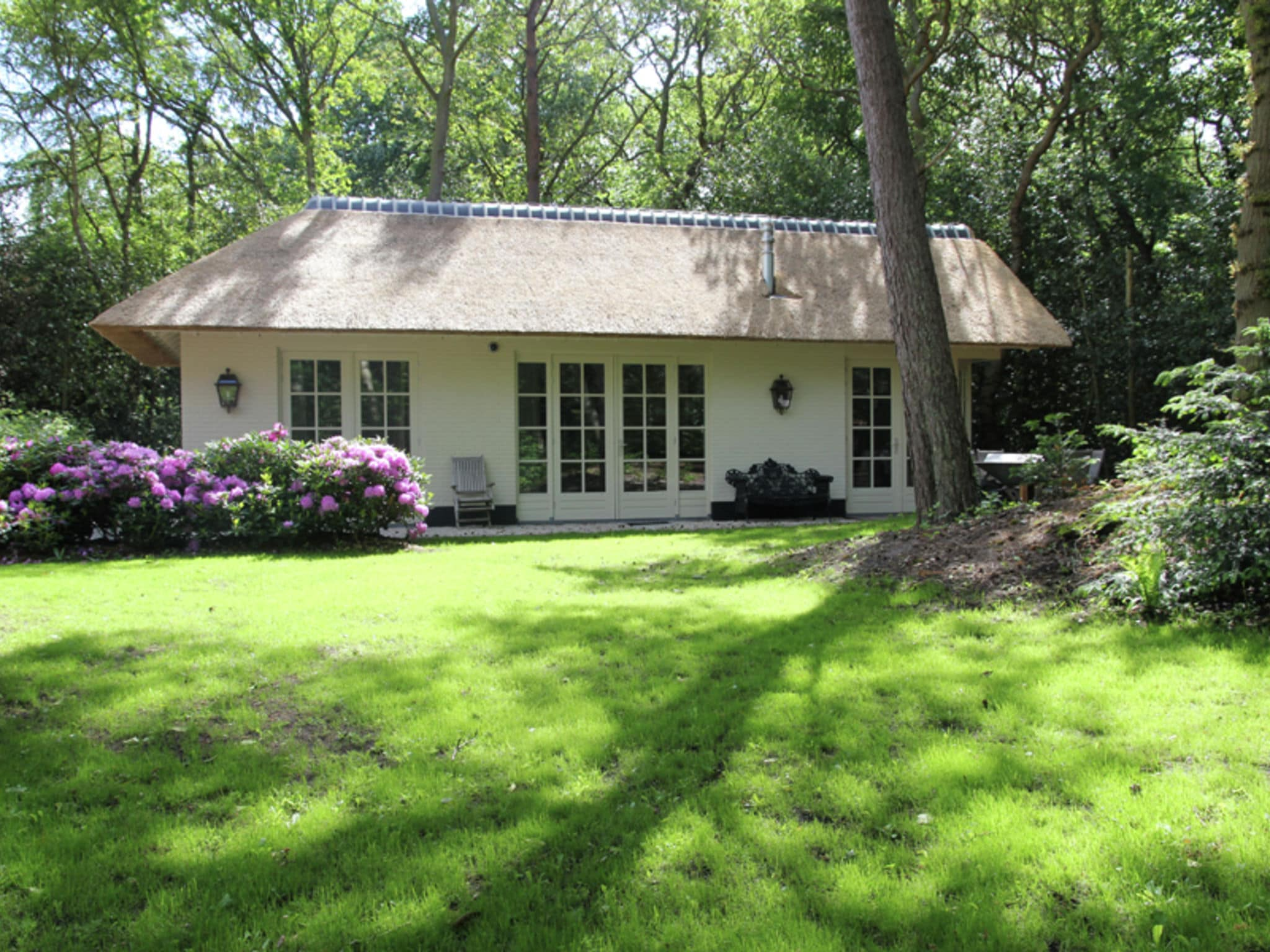 Holland | North Sea Coast North | Holiday home Berger Cottage | all year | ExteriorSummer