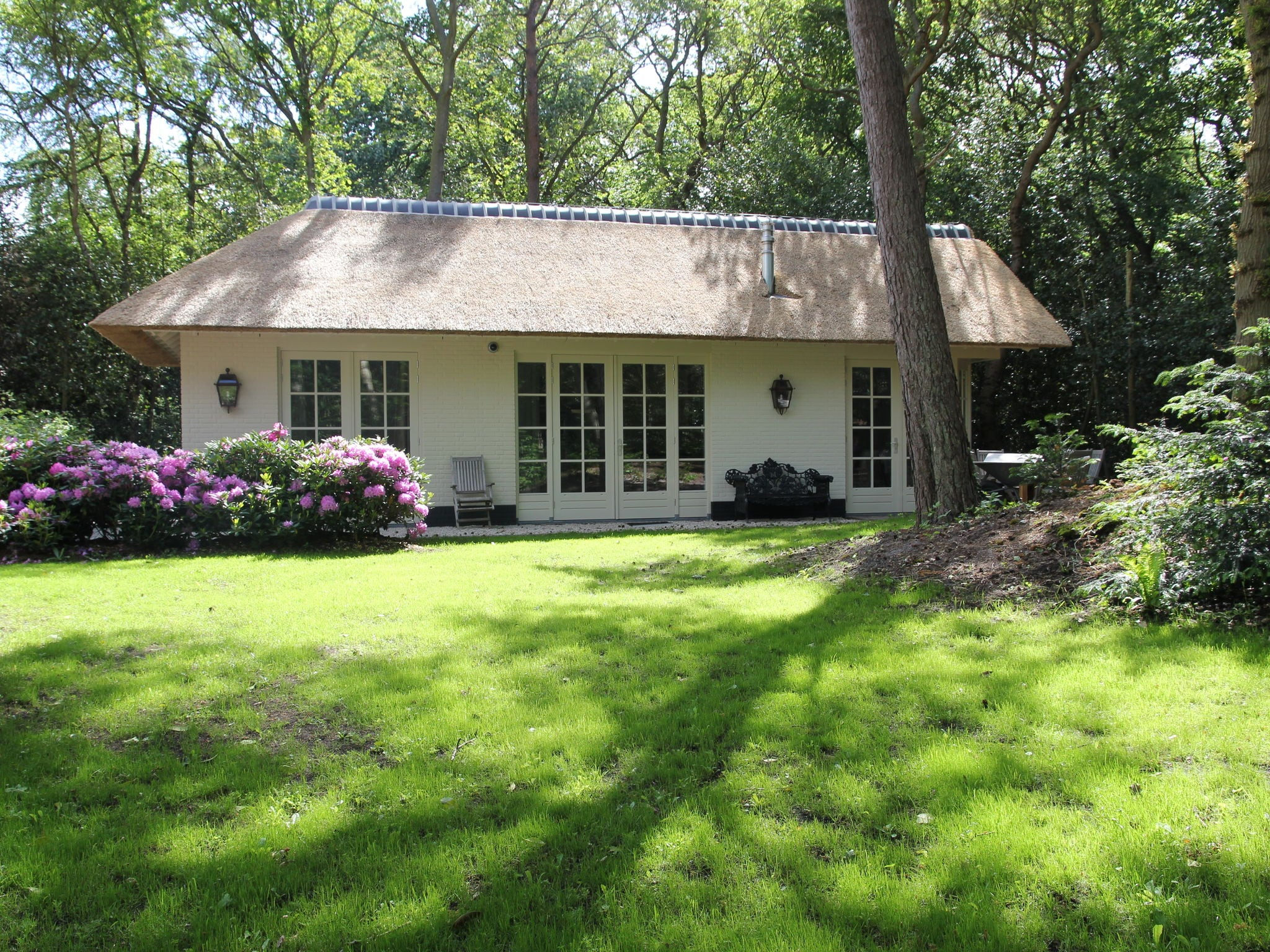 Holland | North Sea Coast North | Holiday home Berger Cottage | all year | GardenSummer