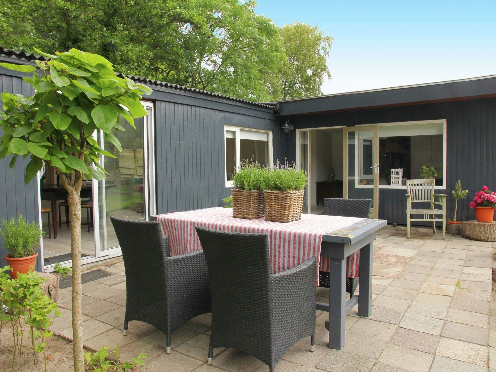 Holland | North Sea Coast North | Holiday home In de Weide | all year | ExteriorSummer