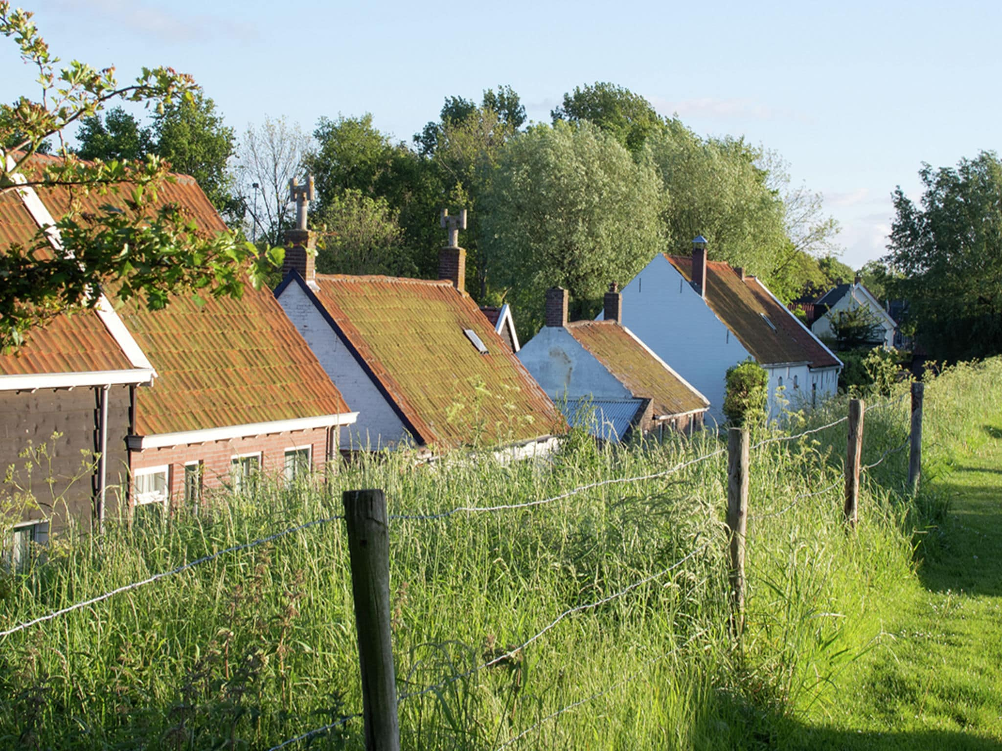 Holland | Zeeland | Holiday home Paola | all year | AreaSummer1KM