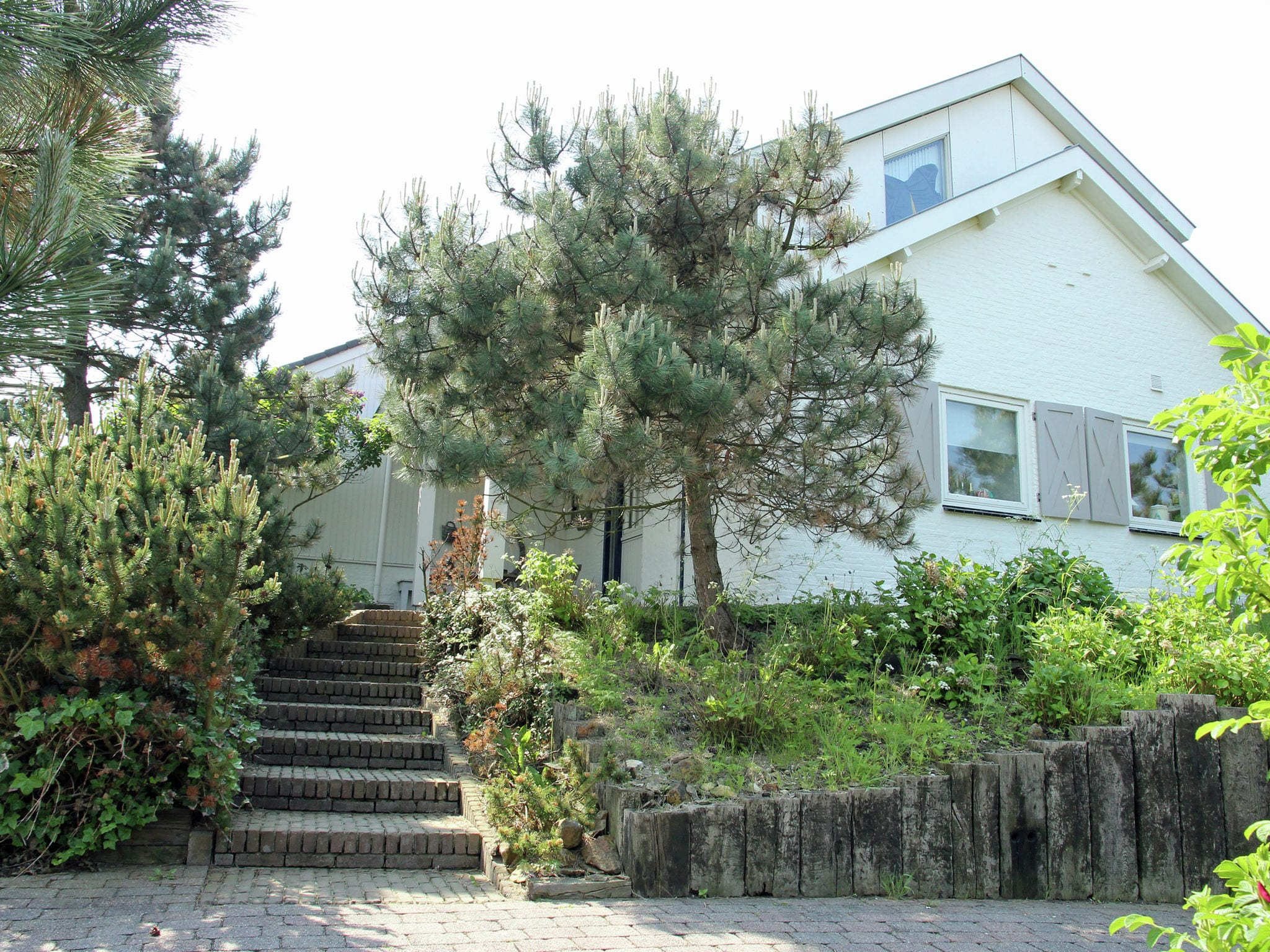 Holland | North Sea Coast North | Holiday home Villa in de Duinen | all year | ExteriorSummer