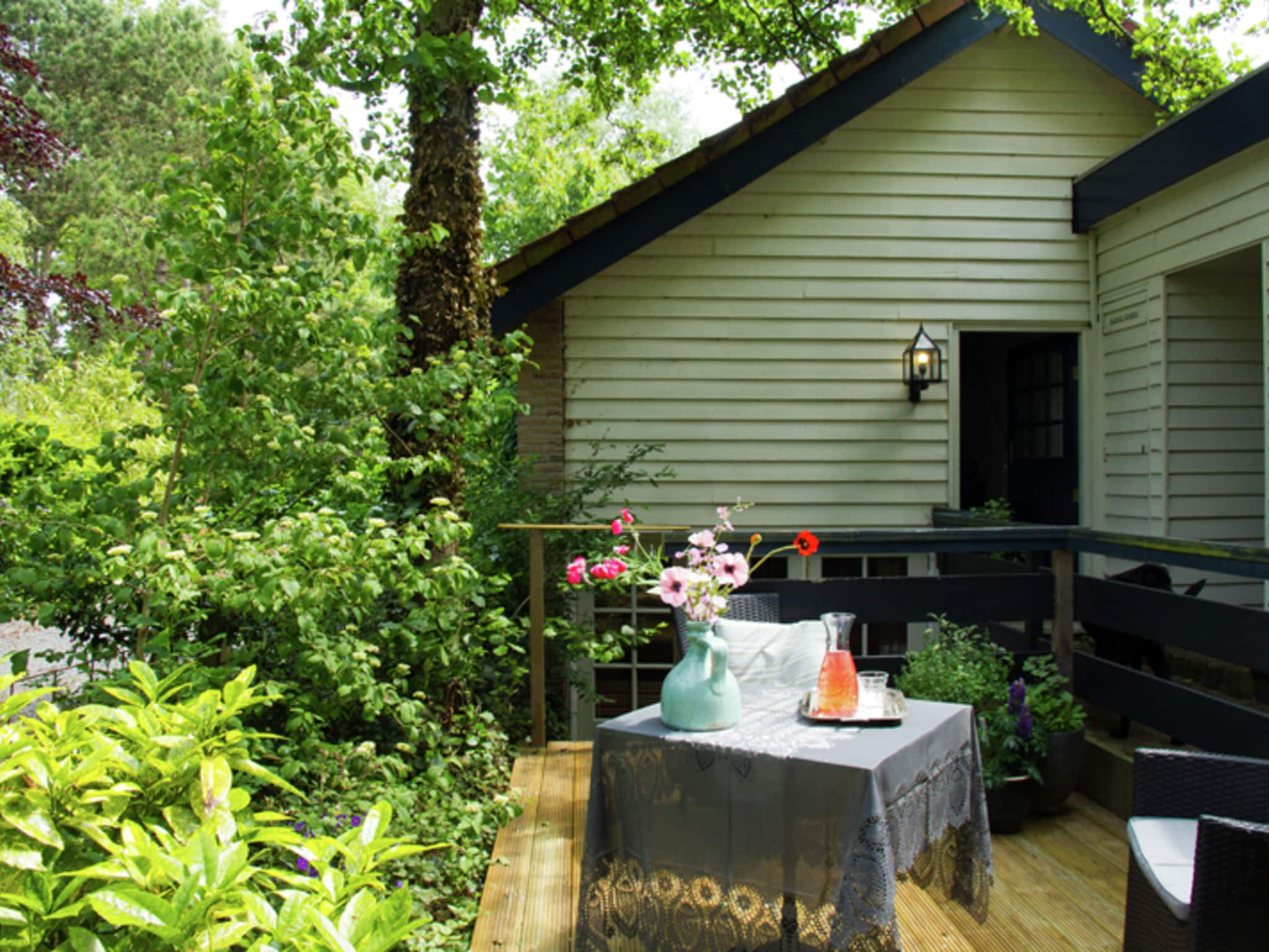 Holland | North Sea Coast North | Holiday home Hommel | all year | ExteriorSummer