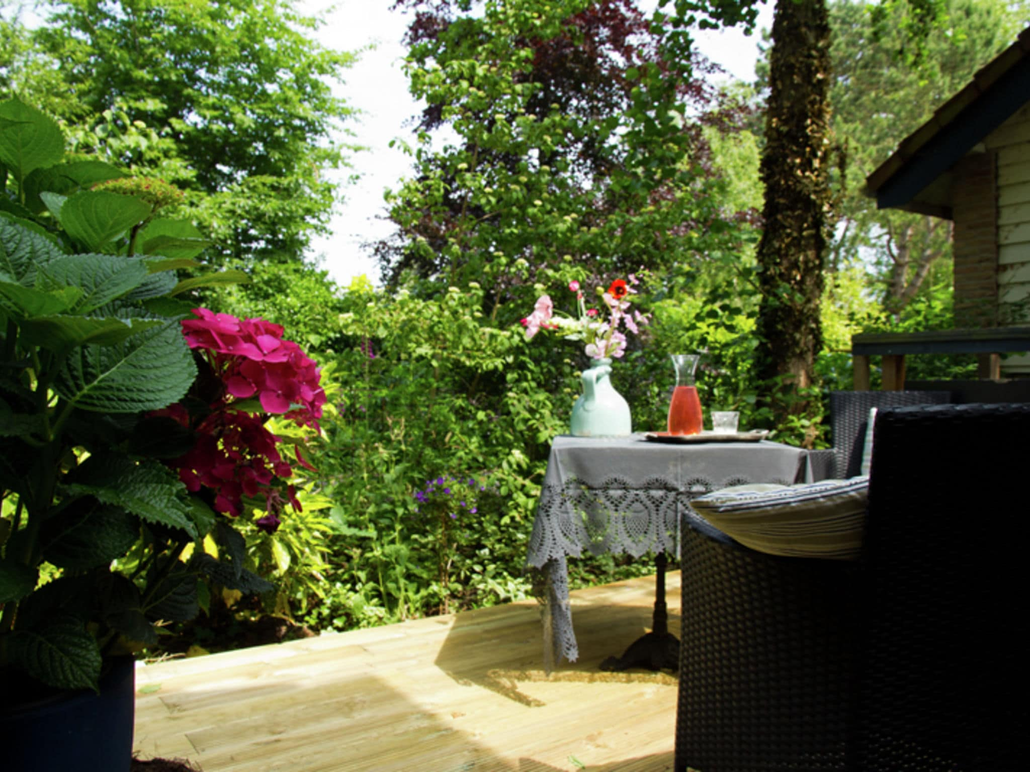 Holland | North Sea Coast North | Holiday home Hommel | all year | GardenSummer