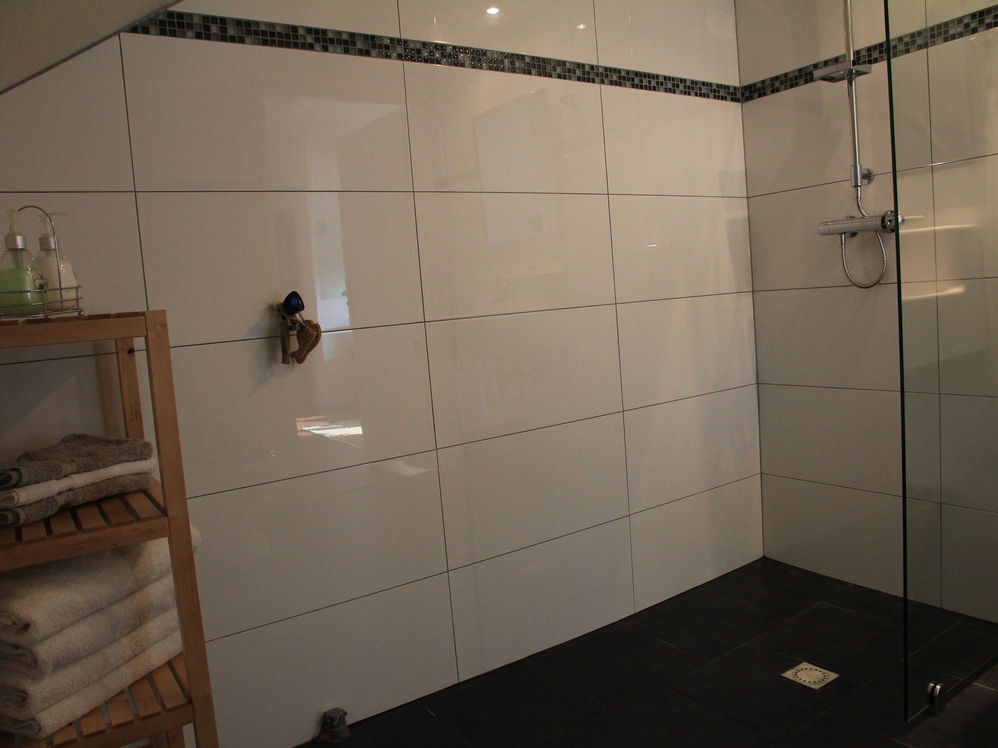 Holland | North Sea Coast North | Holiday home Hommel | all year | BathRoom
