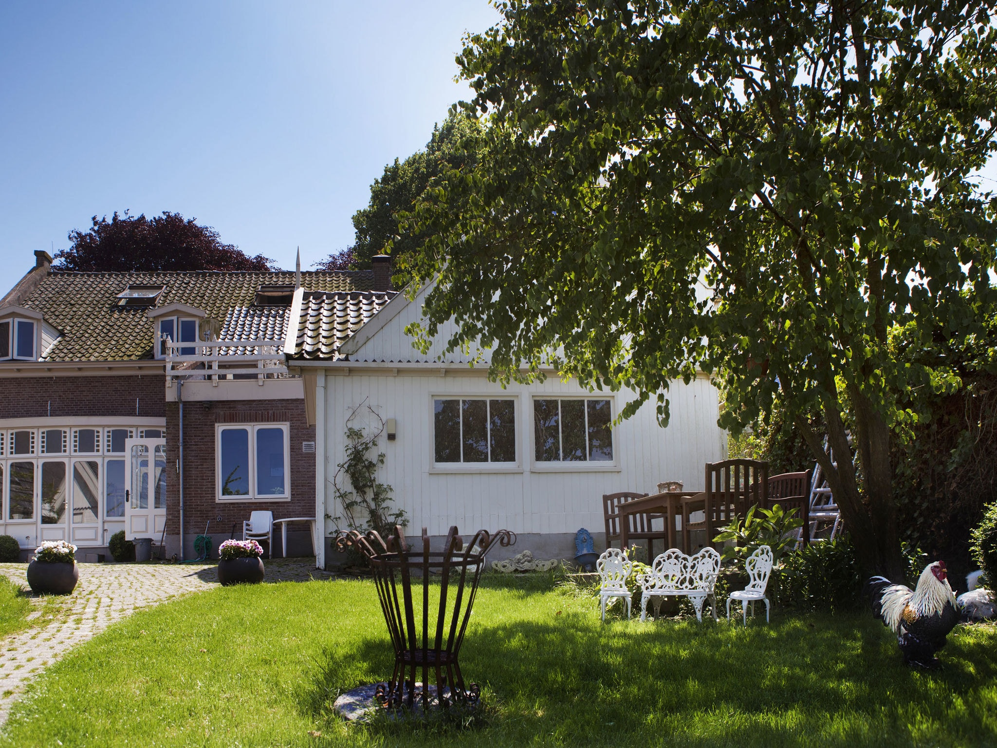 Holland | North Sea Coast North | Holiday home De Pastorie | all year | ExteriorSummer