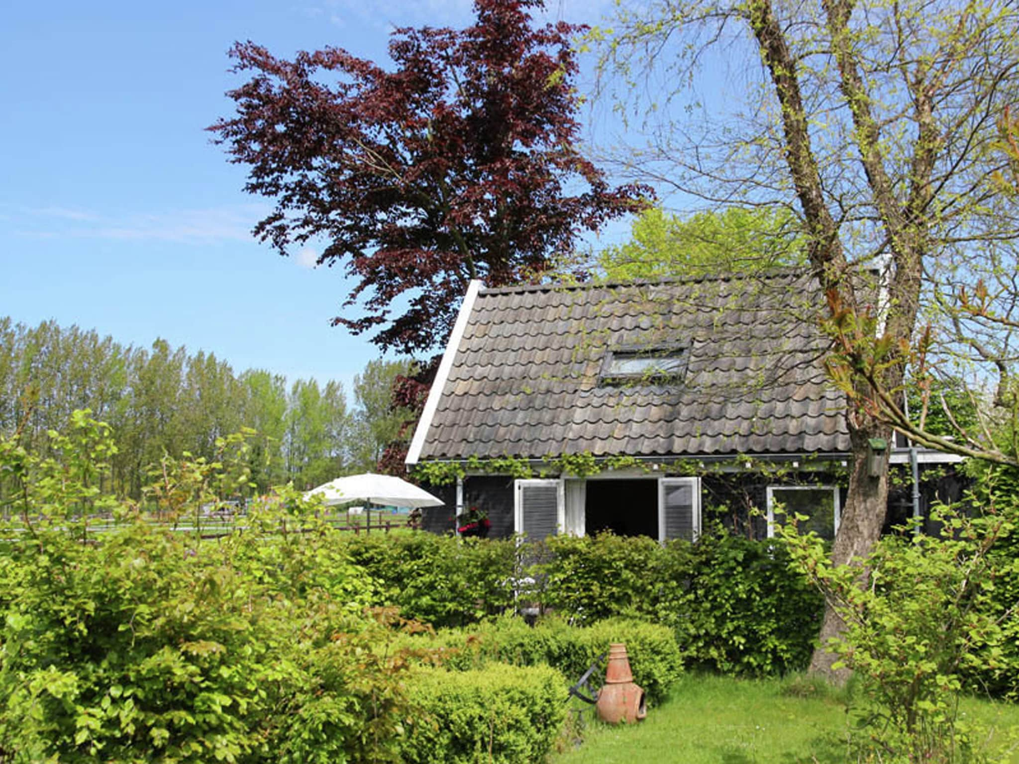 Holland | North Sea Coast North | Holiday home De Ronde O | all year | ExteriorSummer