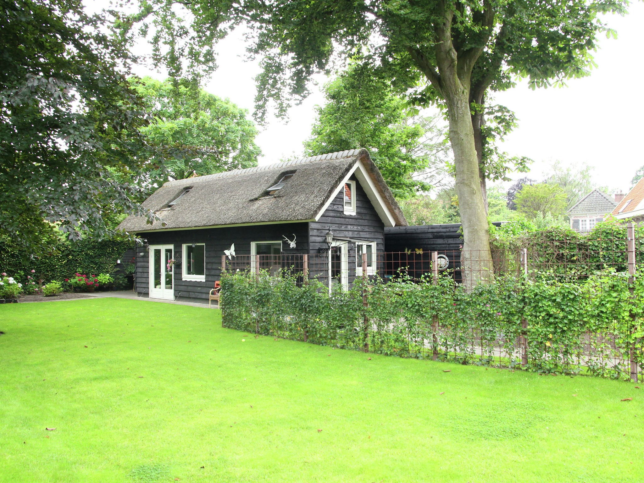 Holland | North Sea Coast North | Holiday home White Court | all year | ViewSummer