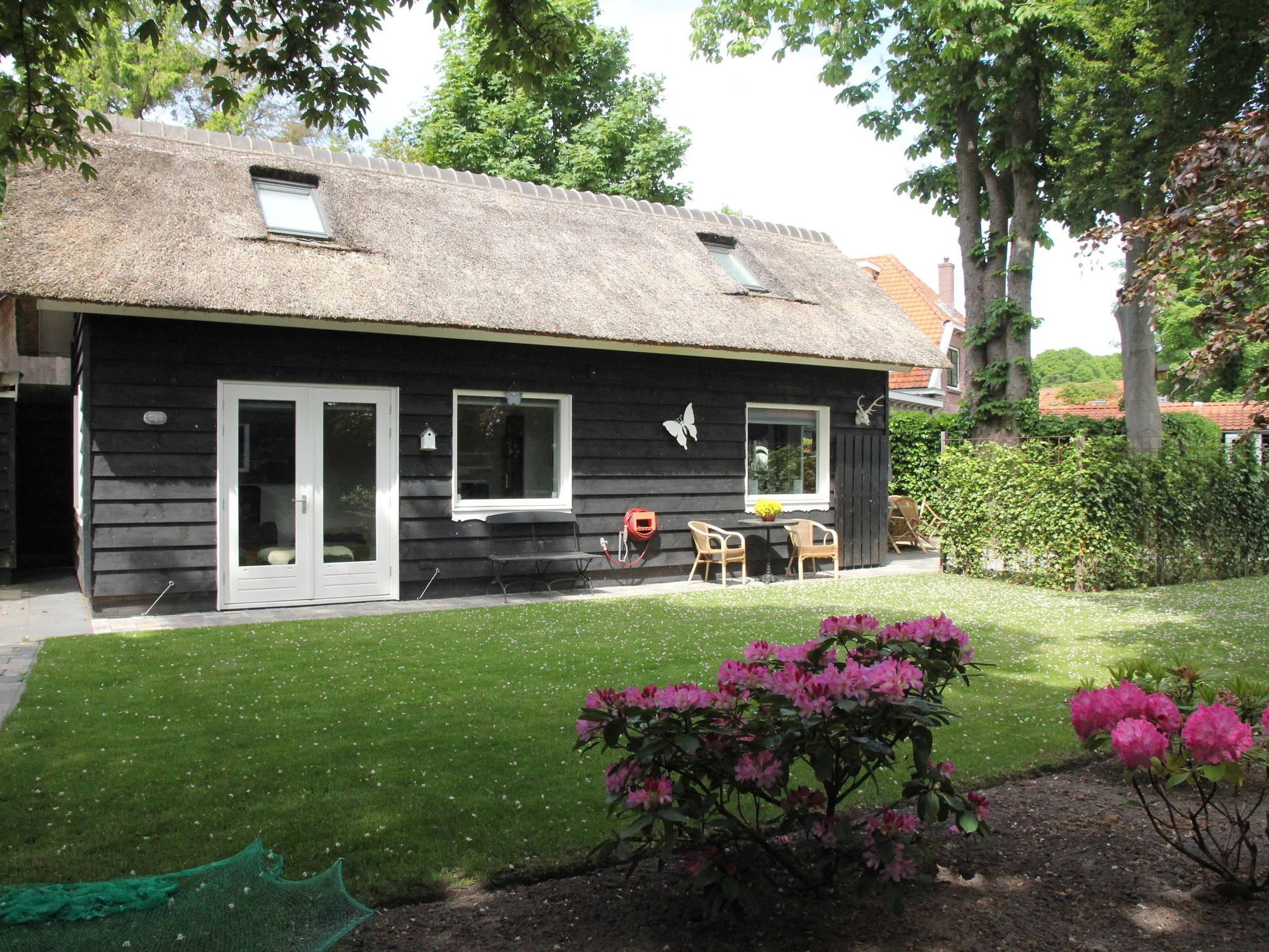 Holland | North Sea Coast North | Holiday home White Court | all year | ExteriorSummer