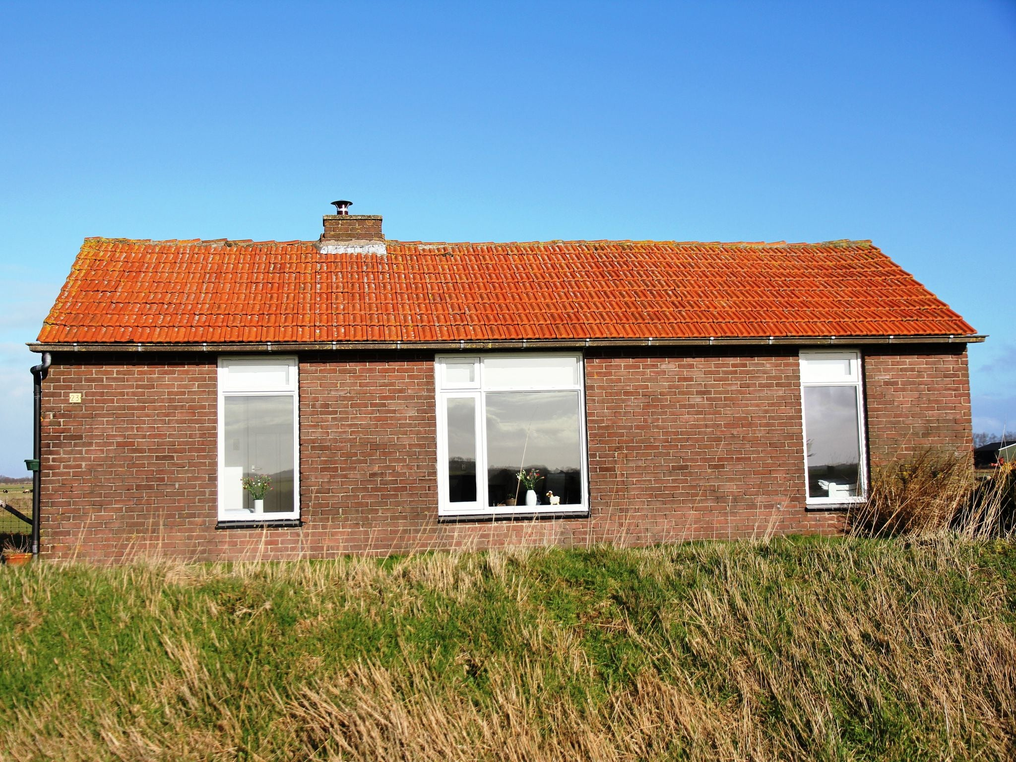 Holland | Wad Islands | Holiday home Het Landhuisje | all year | ExteriorSummer
