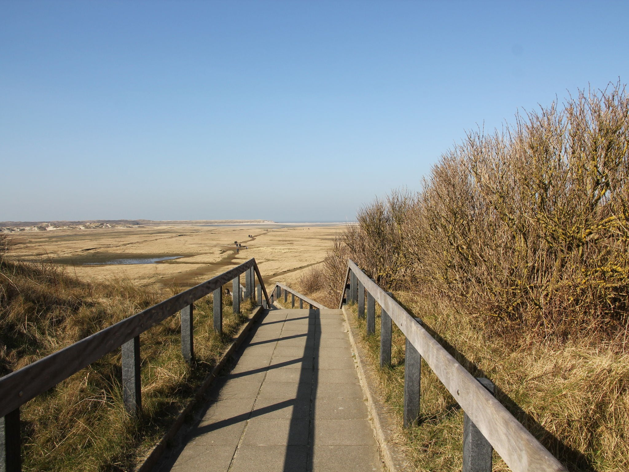 Holland | Wad Islands | Holiday home Duintrots | all year | AreaSummer20KM