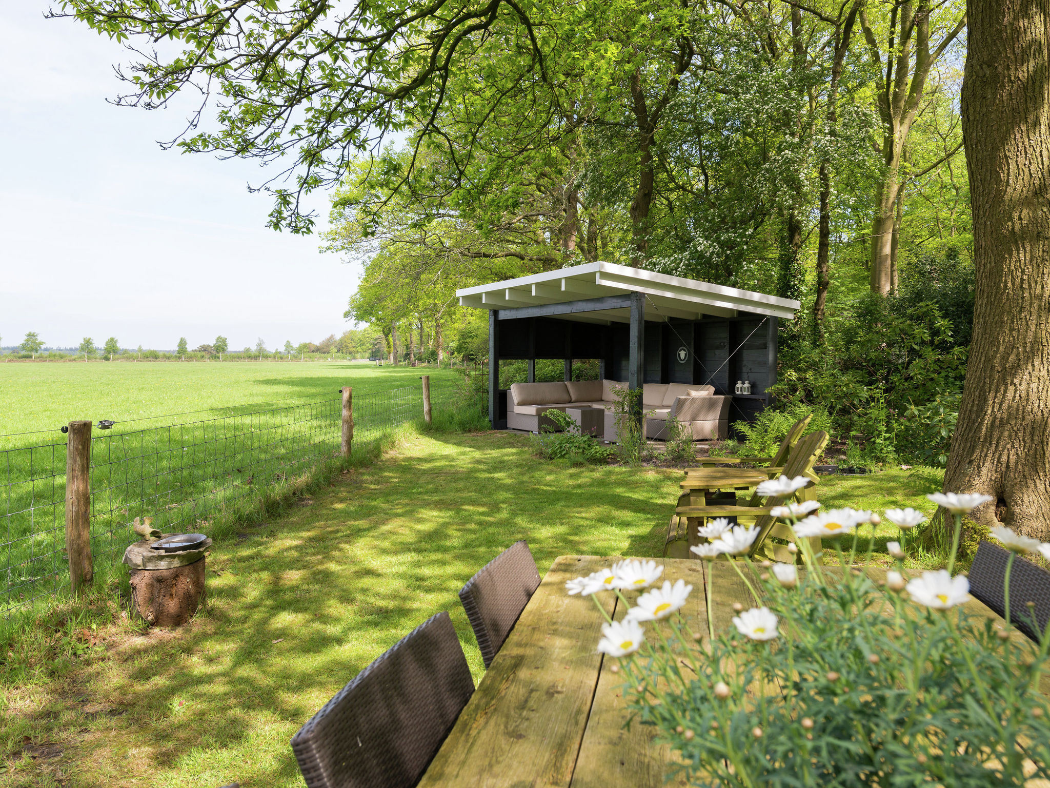 Holland | Drenthe | Holiday home Doldersummer | all year | ExteriorSummer