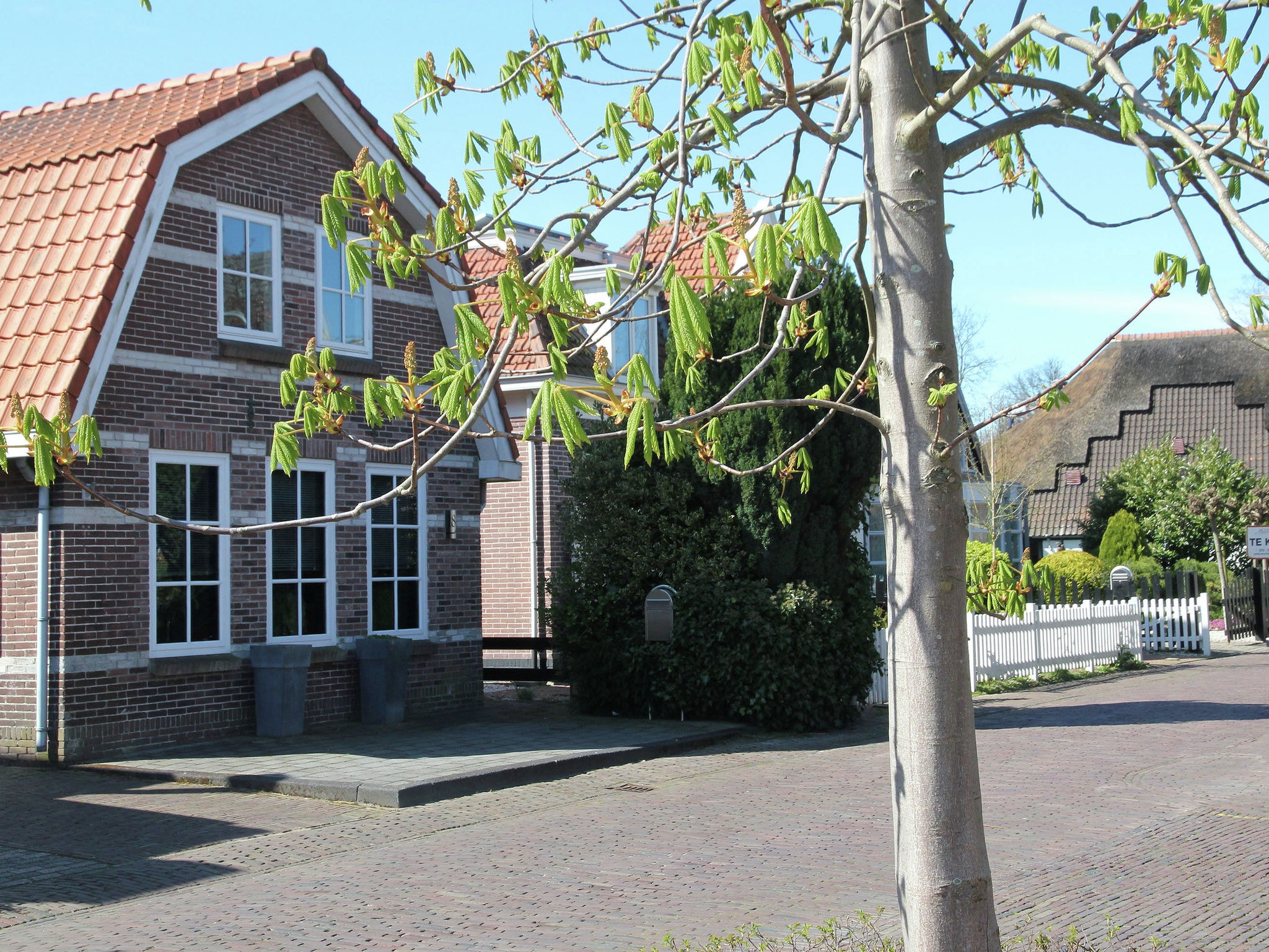 Holland | North Sea Coast North | Holiday home Bergen Centre | all year | ExteriorSummer