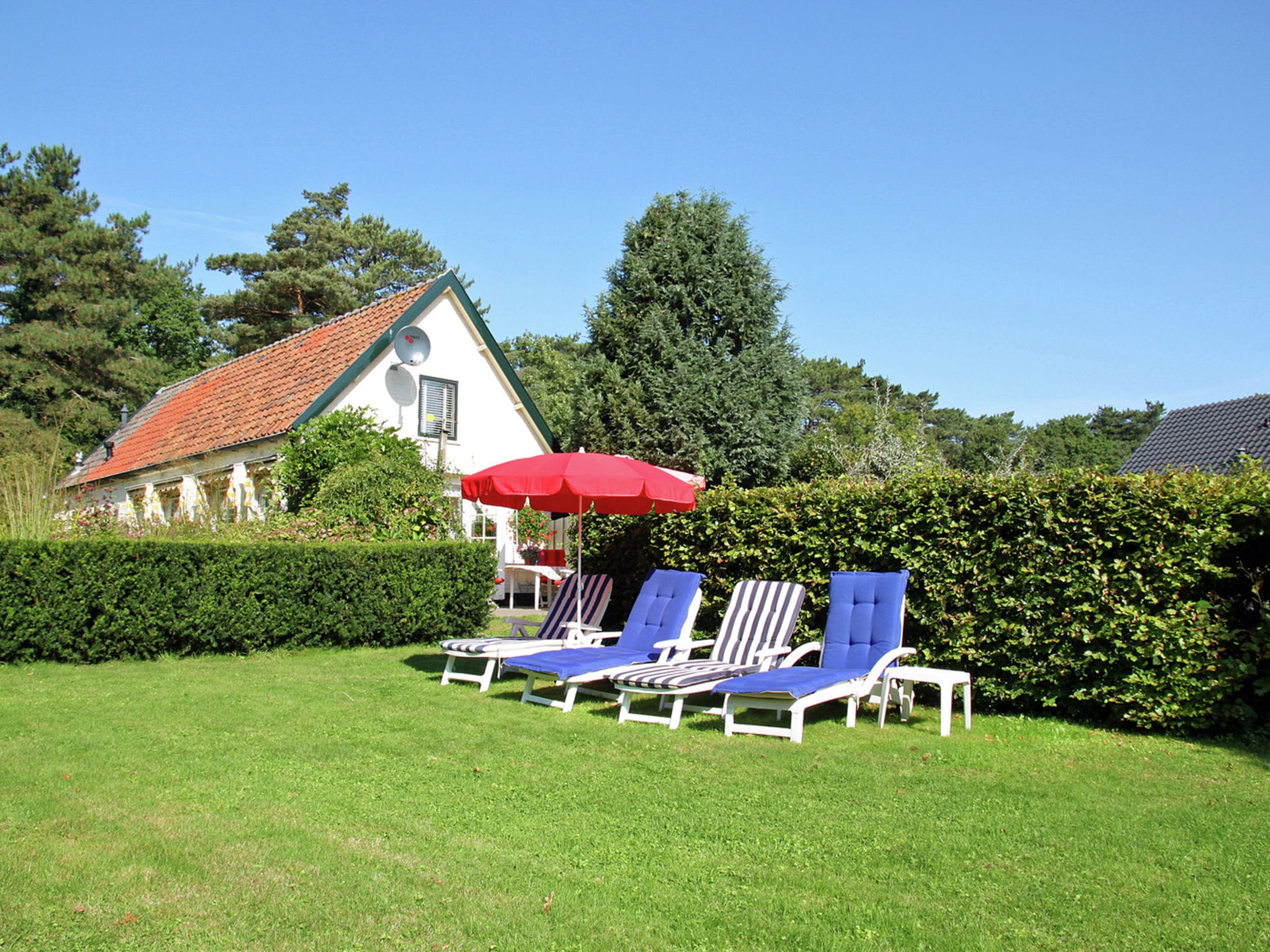 Holland | North Sea Coast North | Holiday home de Groene Specht | all year | ViewSummer