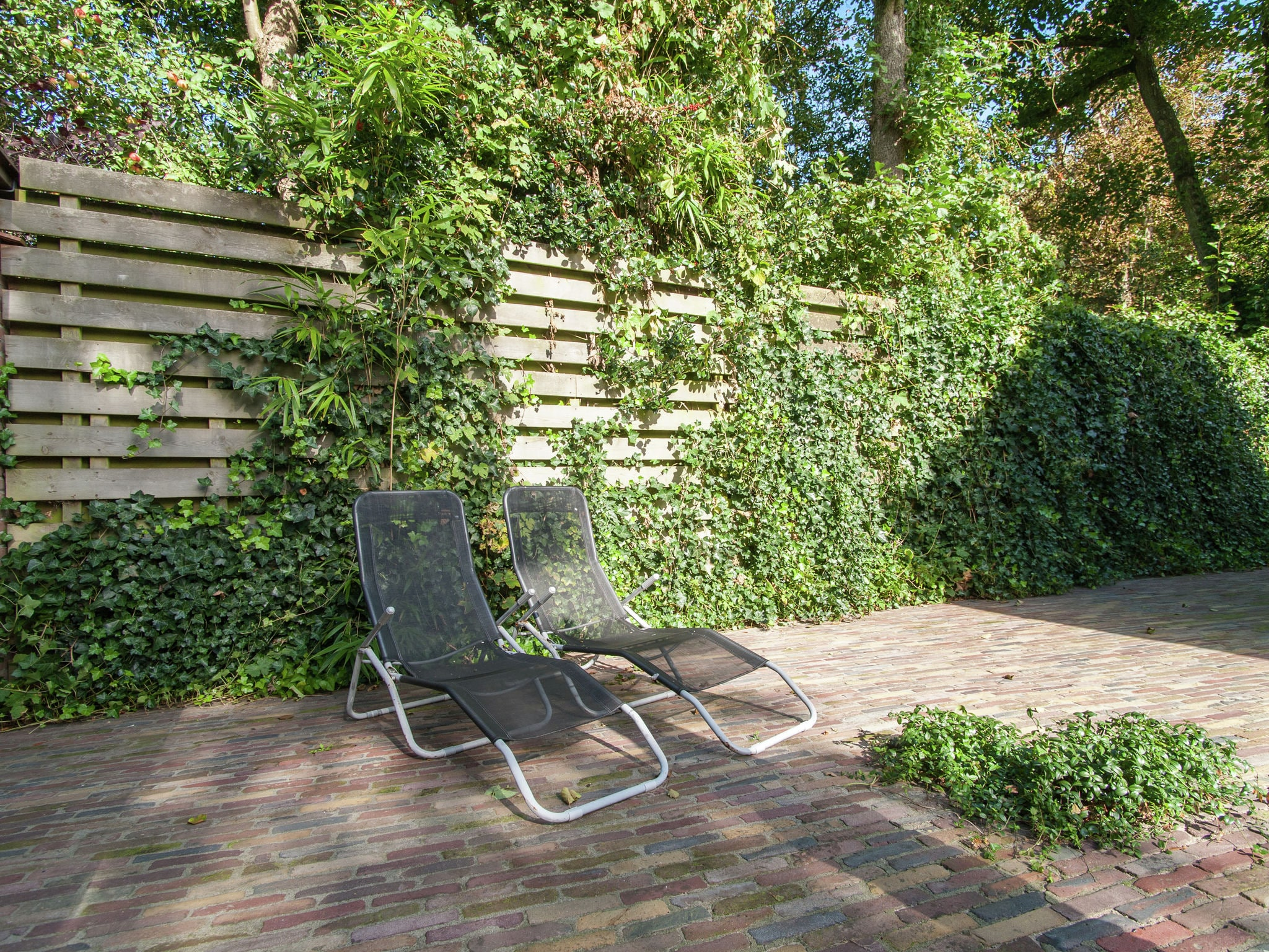 Holland | North Sea Coast North | Holiday home Bergense Duyn | all year | TerraceBalcony