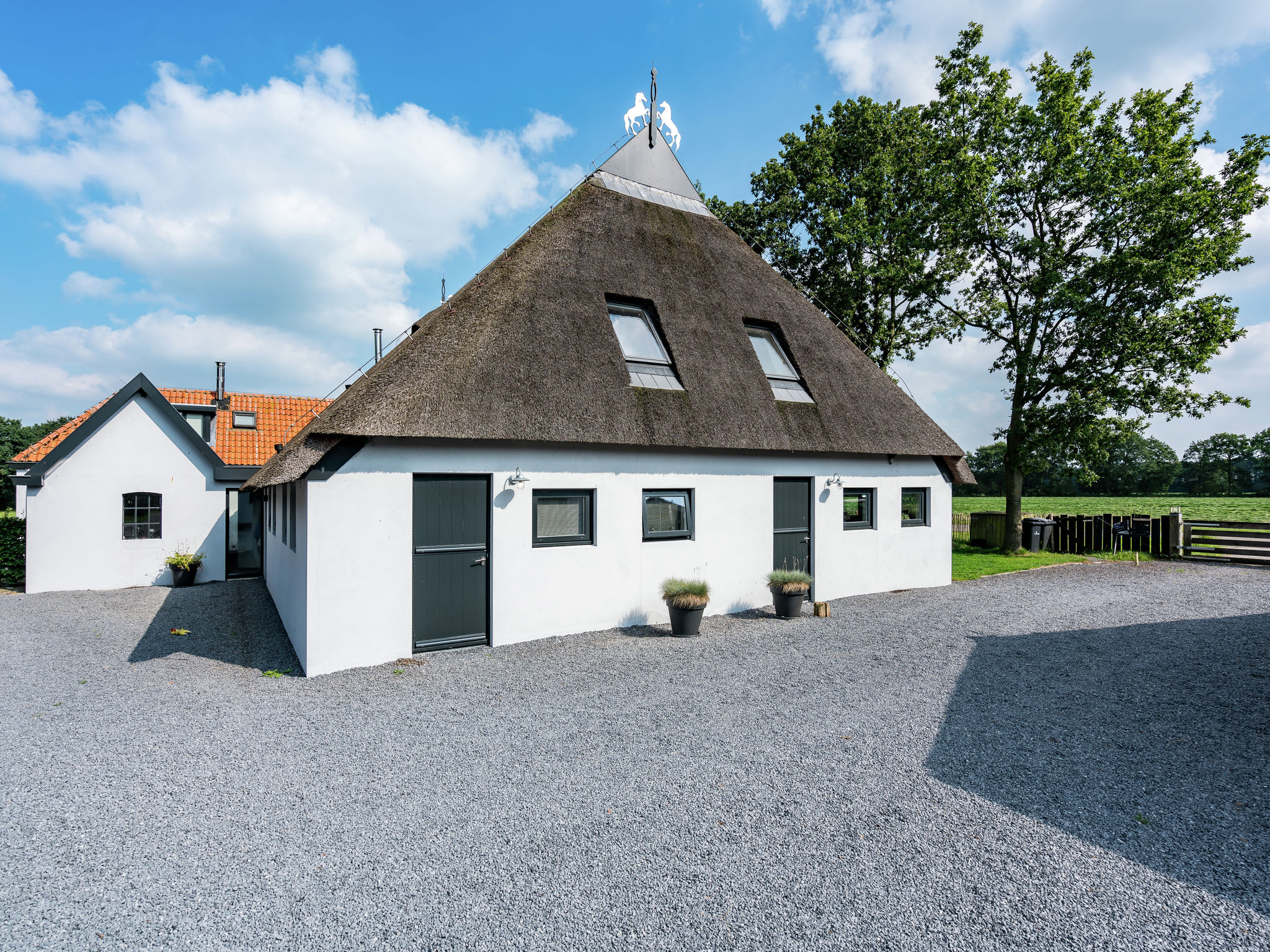 Holland | Friesland | Holiday home B&B Roode Bes | all year | ExteriorSummer