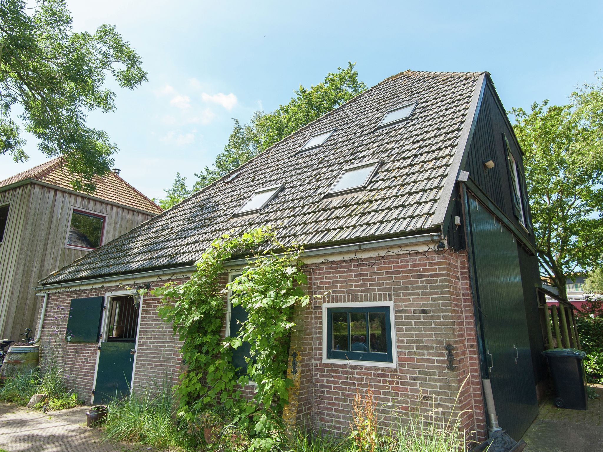 Holland | North Sea Coast North | Holiday home Kapberg Schoorl | all year | ExteriorSummer