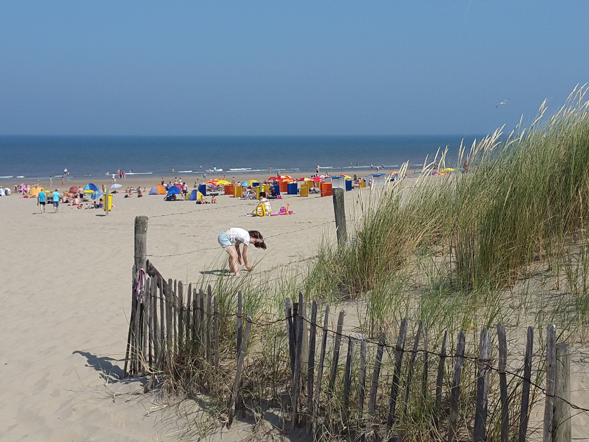 Holland | North Sea Coast South | Holiday home Beach Breeze | all year | AreaSummer1KM