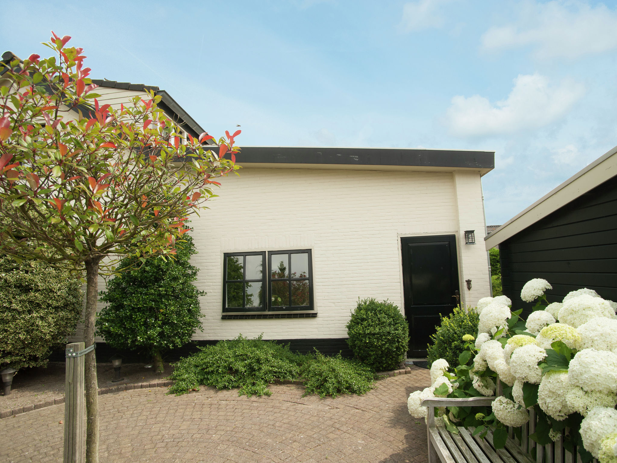 Holland | North Sea Coast North | Holiday home Naast het Bollenveld | all year | ExteriorSummer