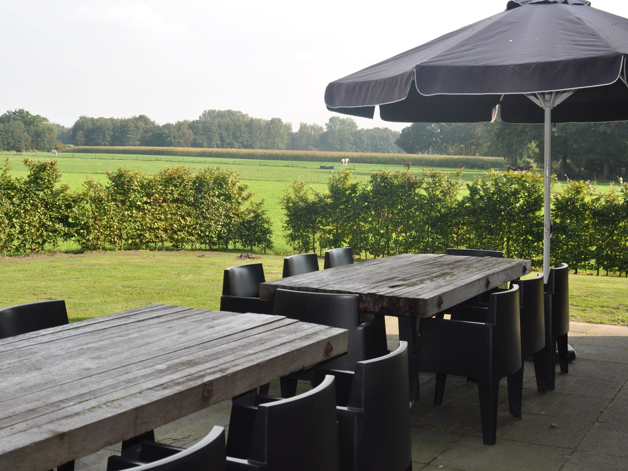 Holland | Noord-Brabant | Holiday home De Riesten | all year | GardenSummer