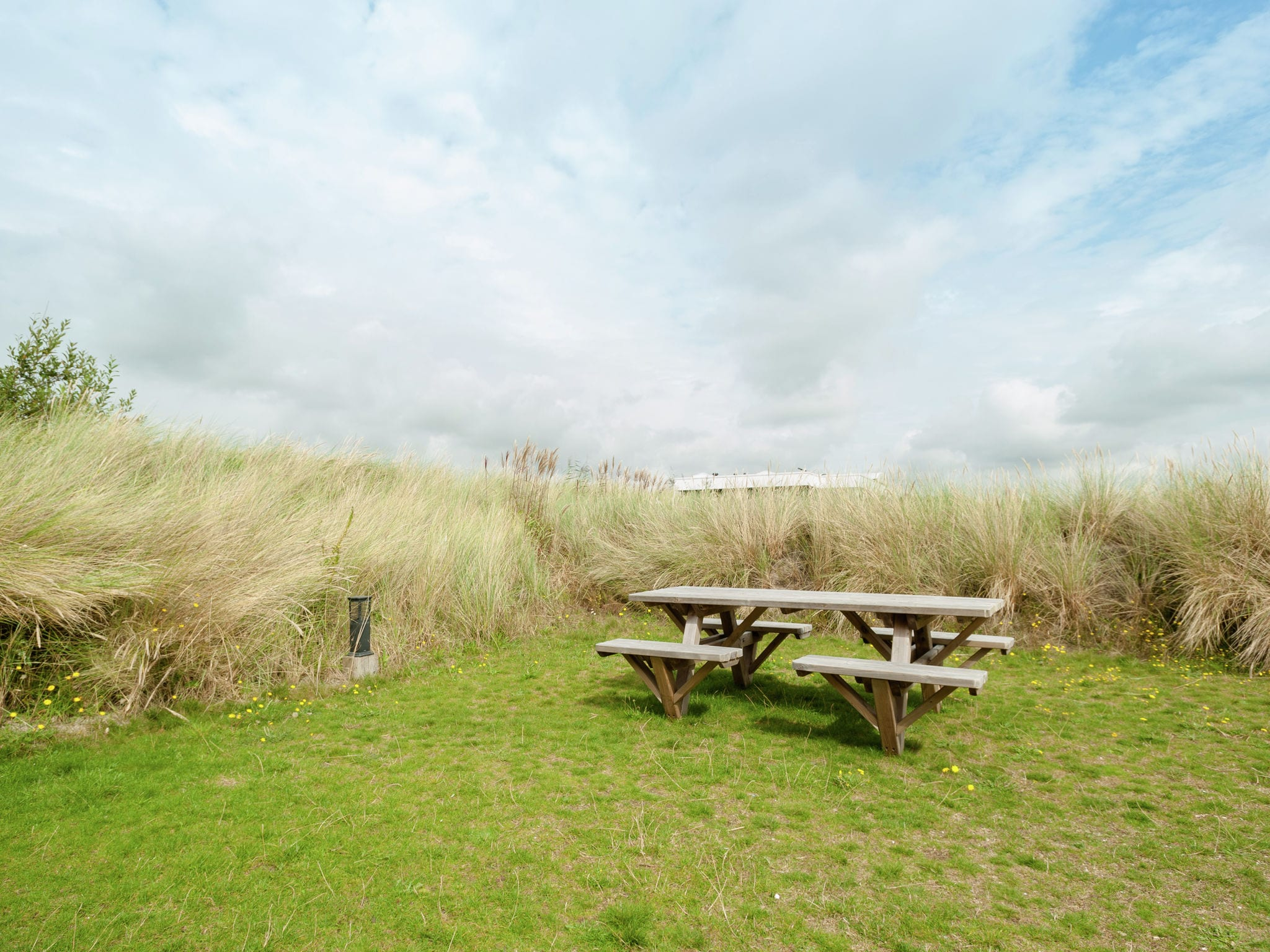 Holland | North Sea Coast North | Holiday home Sea Lodge Aan de Duinen | all year | GardenSummer